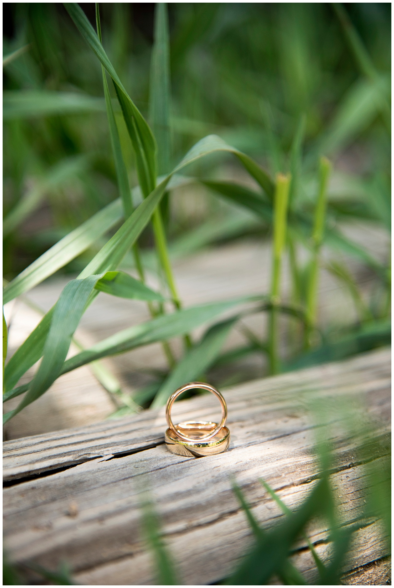 Farm_Wedding_Photographer_Evergreen_Lake_House_Colorado_Barn_Destination_Hawaii_Photography_Mountain_Weddings_003.jpg