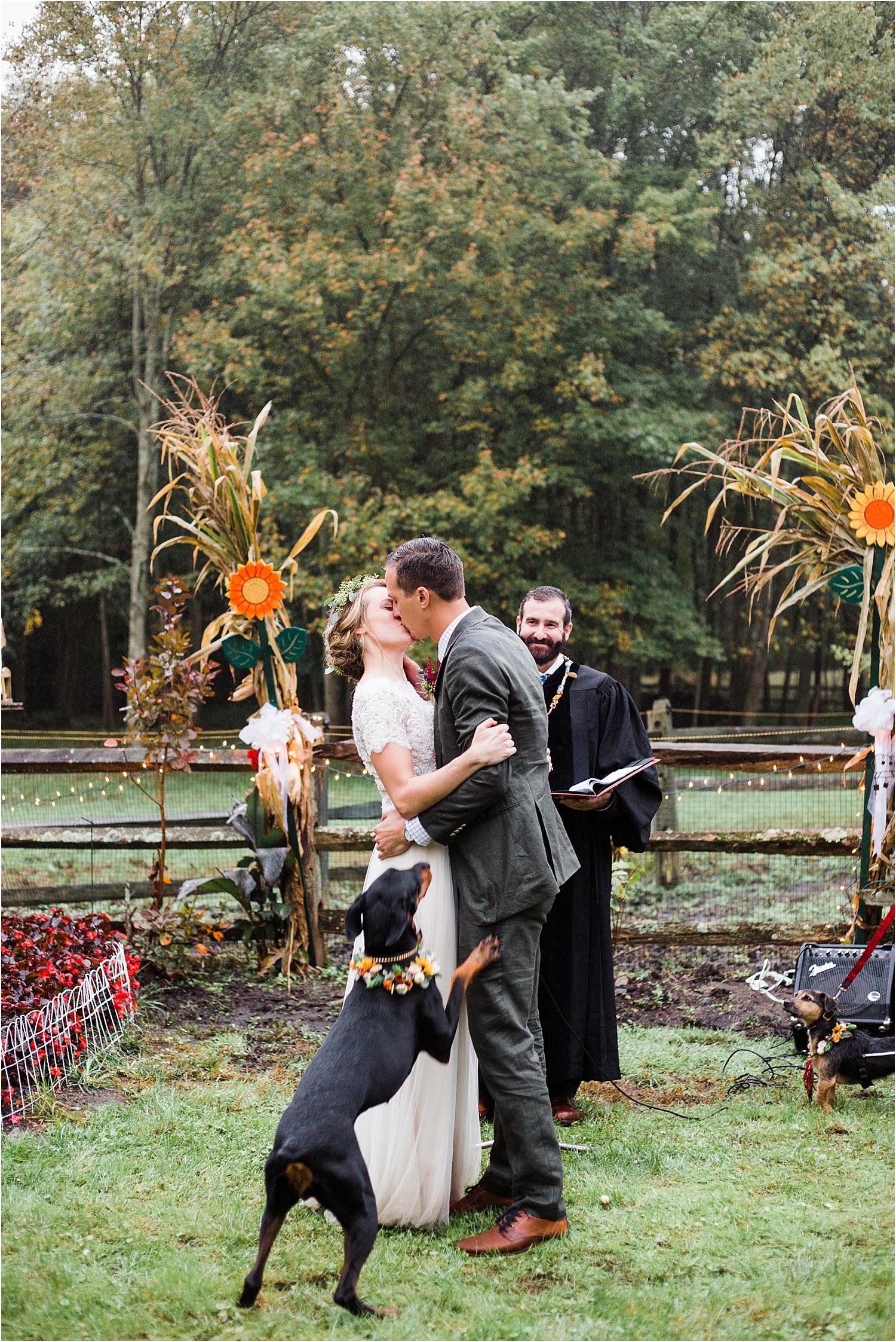 Dogs In Weddings, Doberman Flower Crown