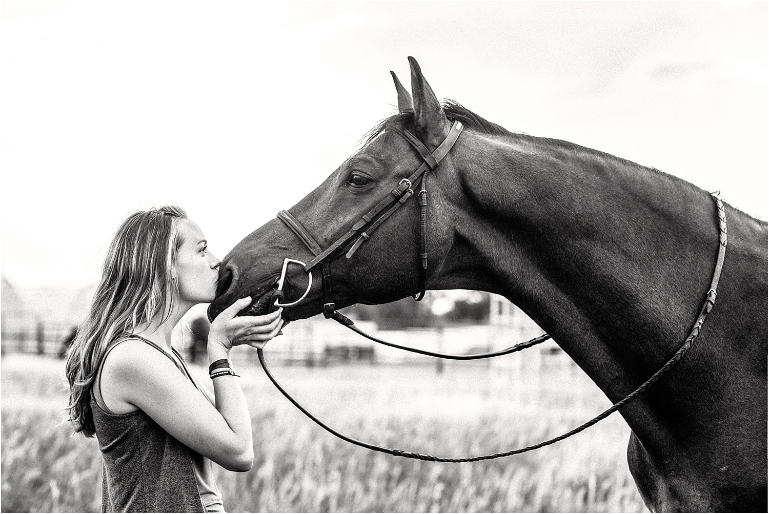 Limbo_Blog_Stomp_Horse_Photography_Equine_Warmblood_Portraits_005.jpg