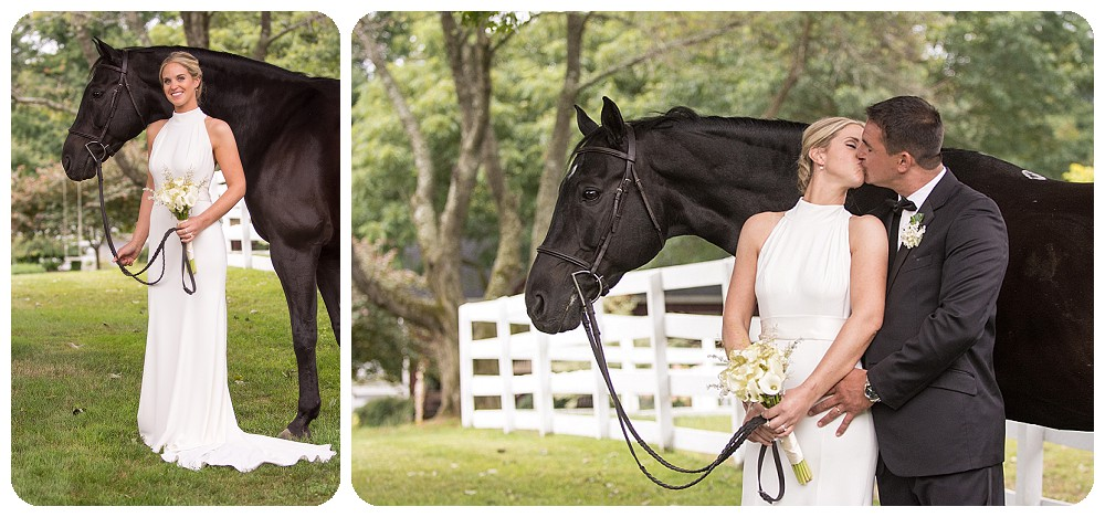 Horse Portrait Upstate NY Wedding Venues Farm Weddings