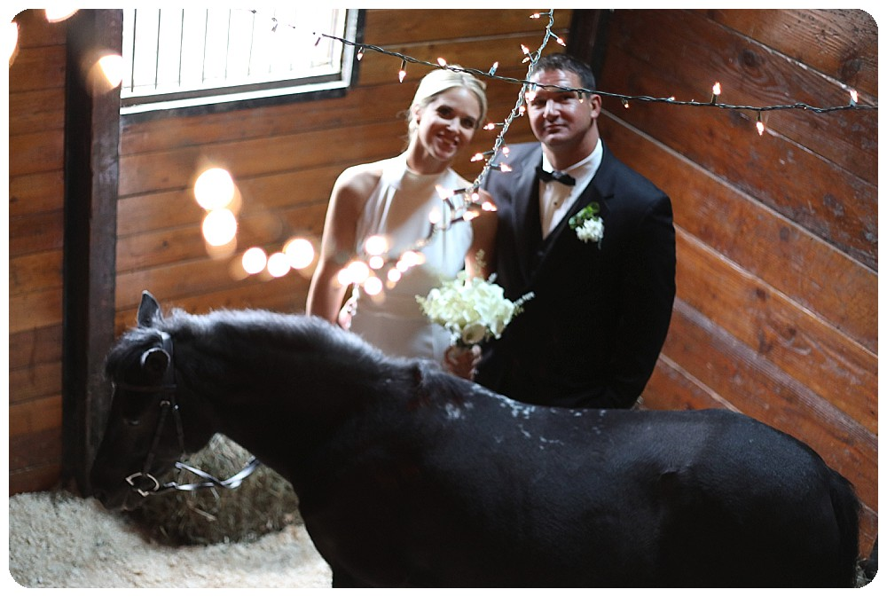 Horse Upstate NY Wedding Venues Farm Weddings