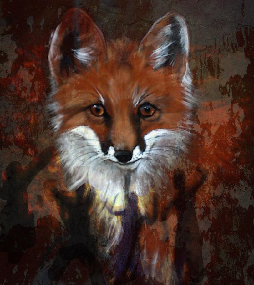 Fonda Haight - Fox collage.jpg