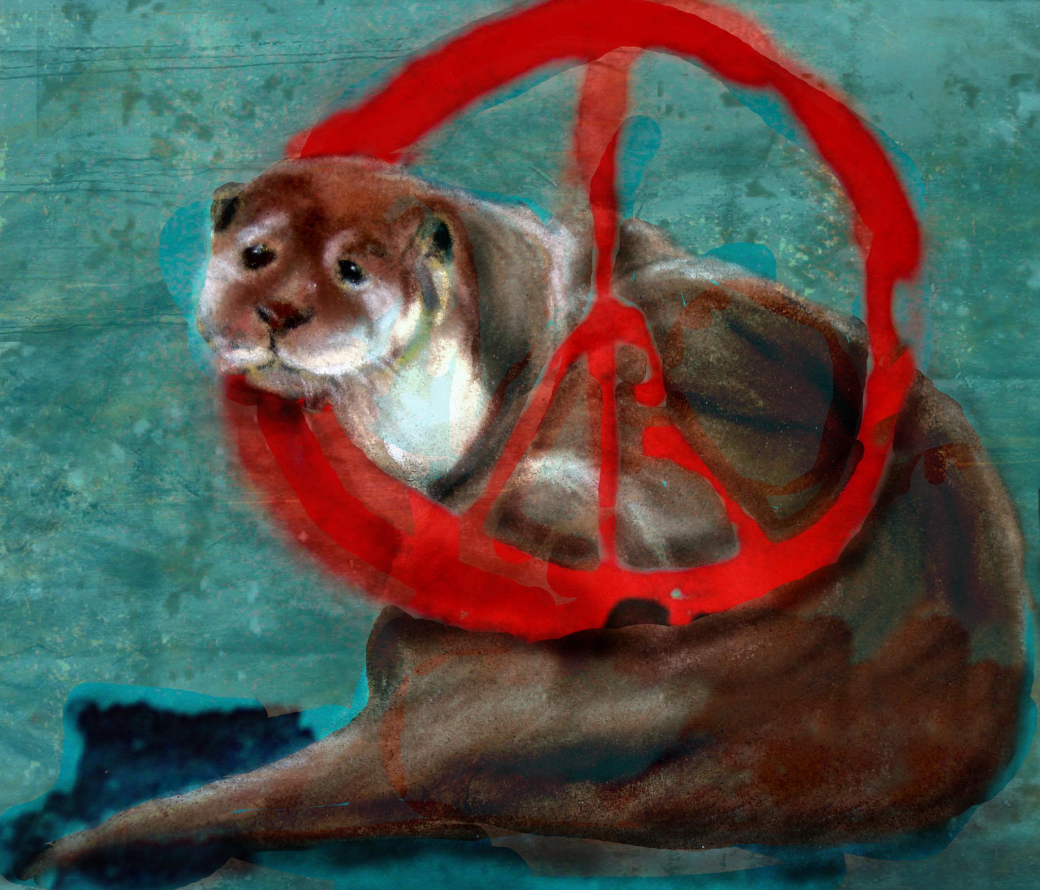 Fonda Haight - otter peace.jpg