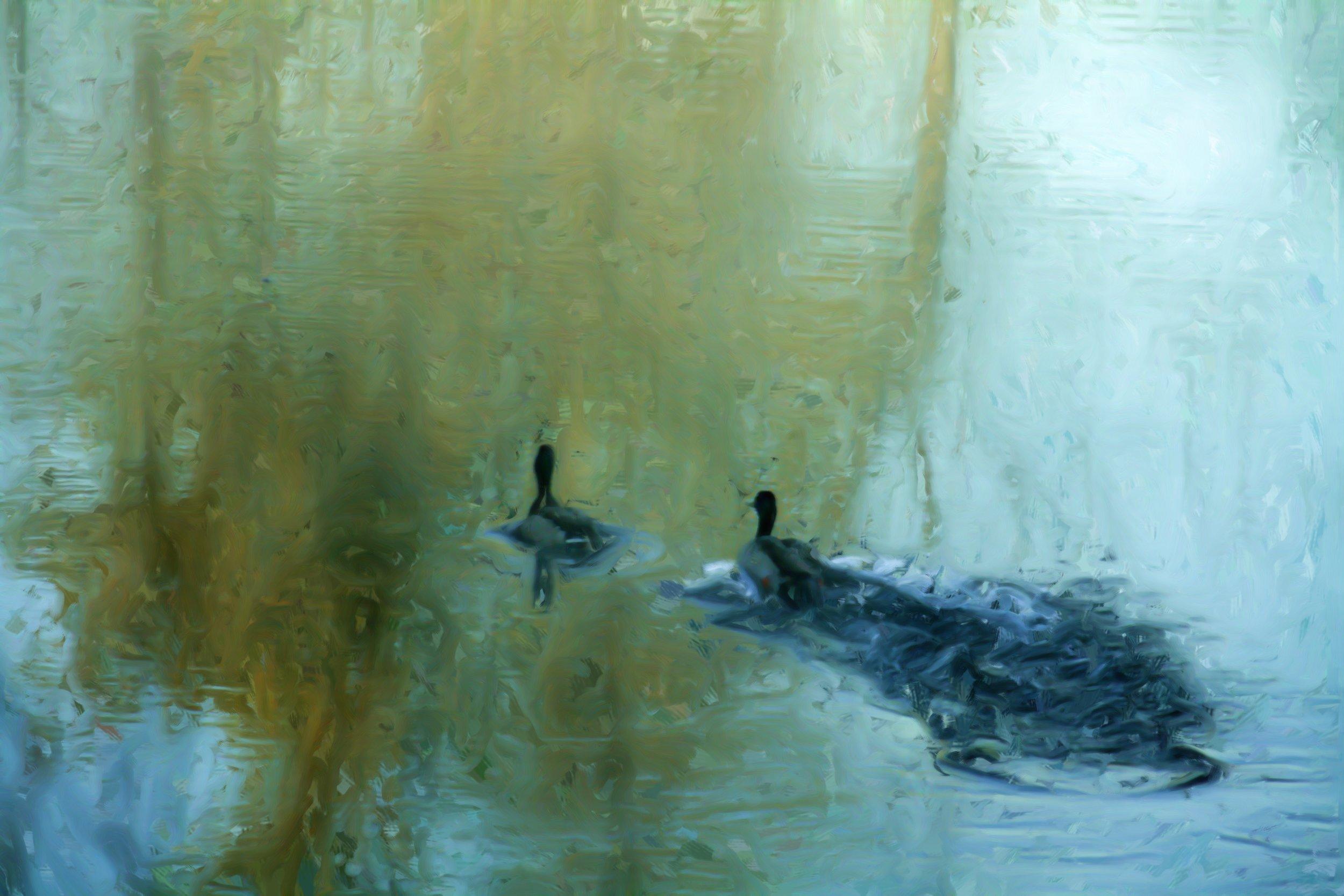 Fonda Haight - two duck land_Painting.JPG