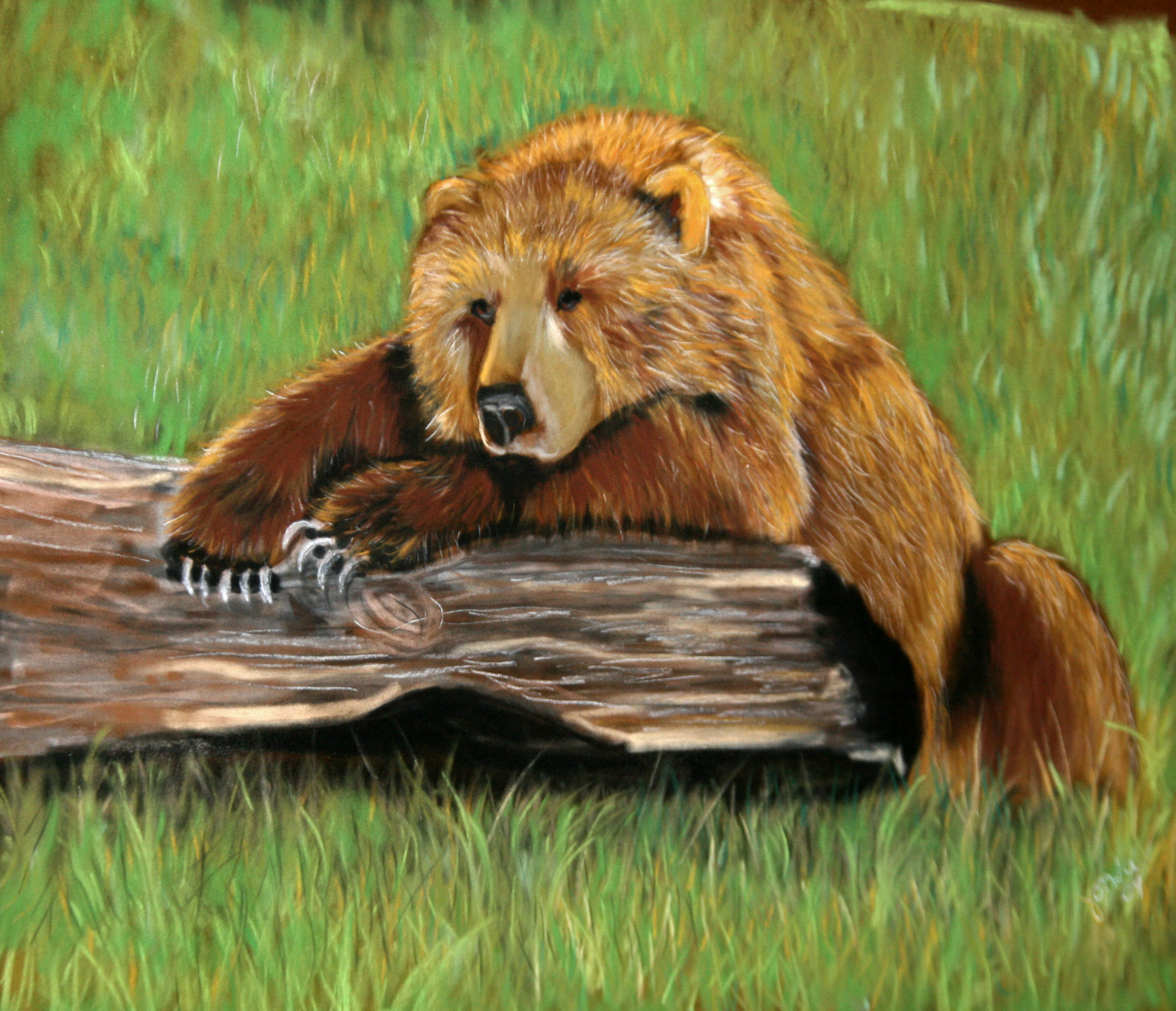 Fonda Haight - brown bear fonda.jpg