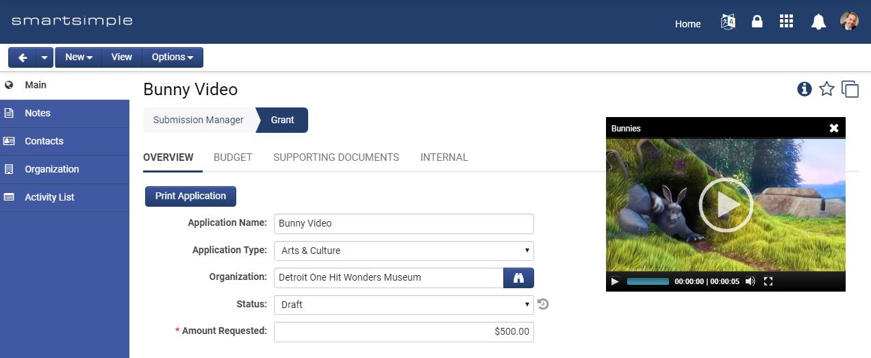 Screenshot of Inline Media Player
