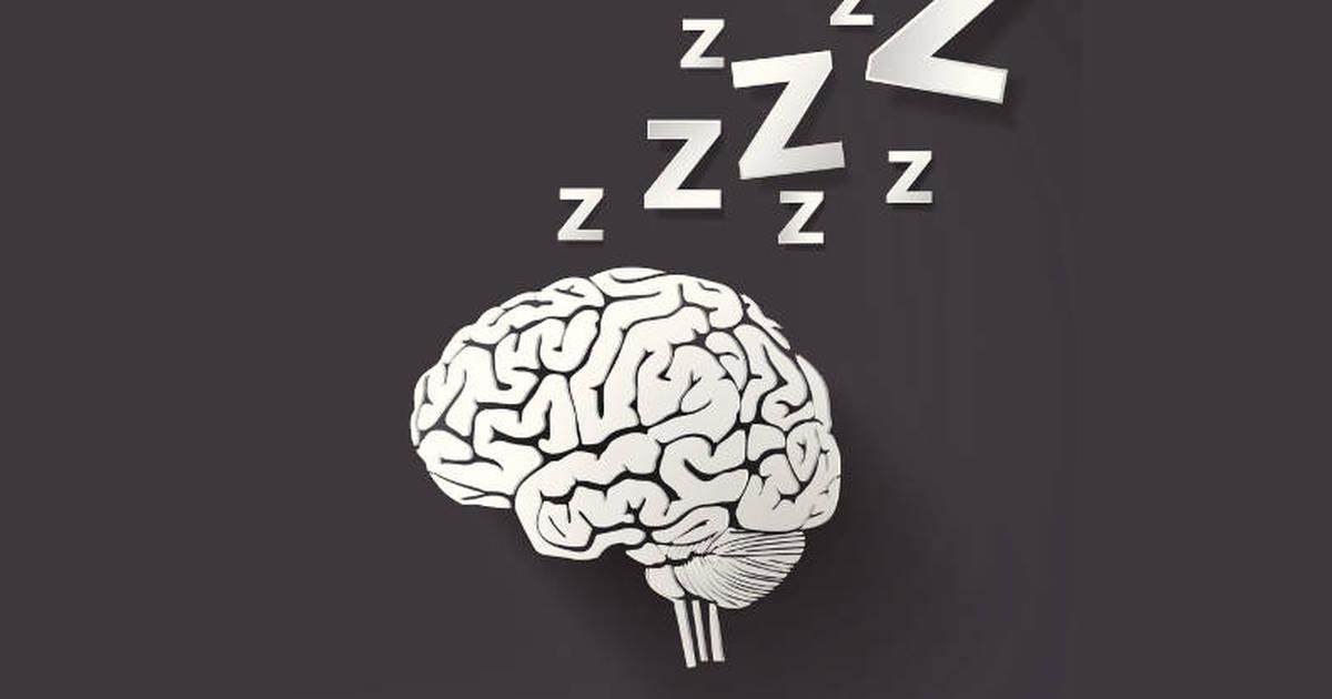 napping-brain.jpg