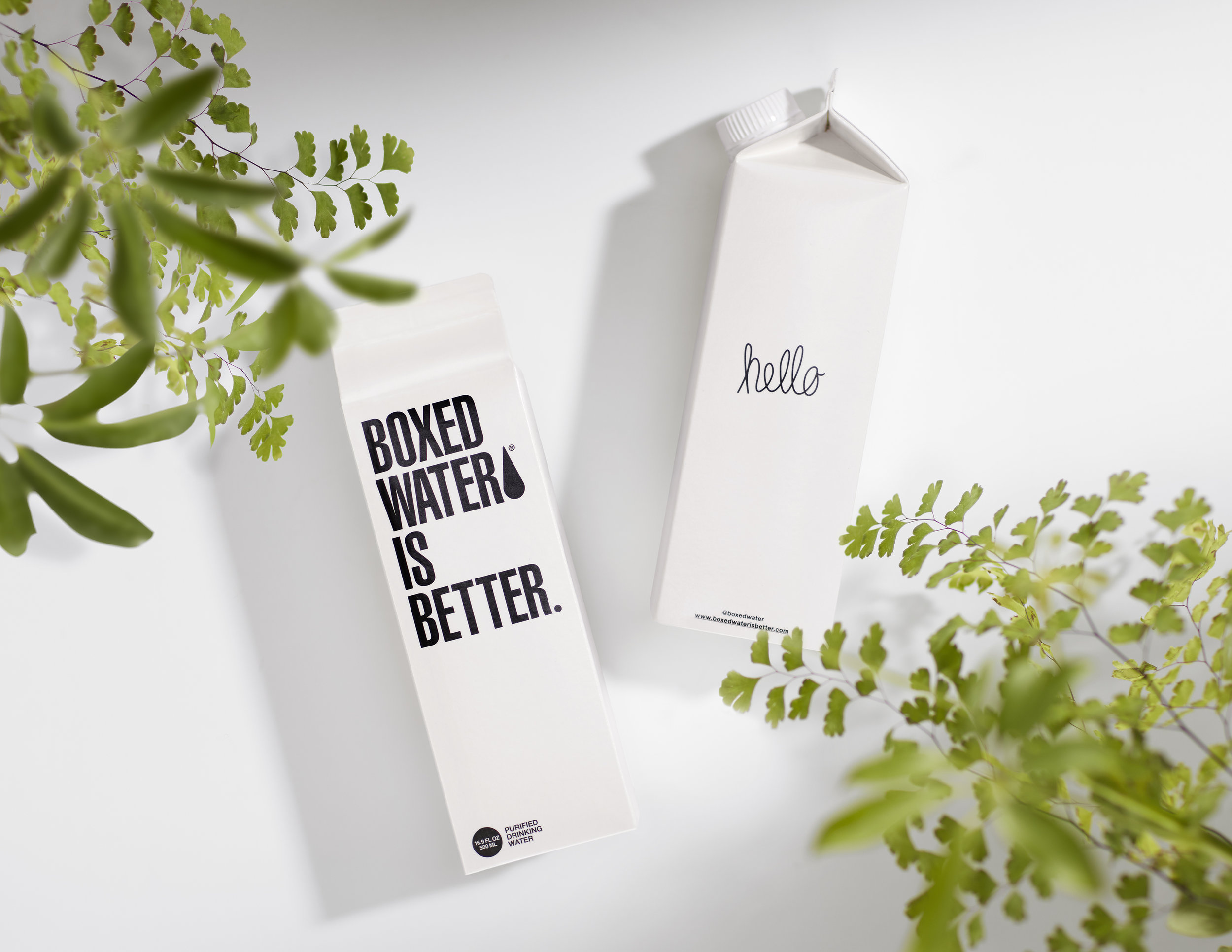 Prop Styling for Boxed Water Art Direction: AUXILIARY Advertising & Design Photographer: DVDP Studio