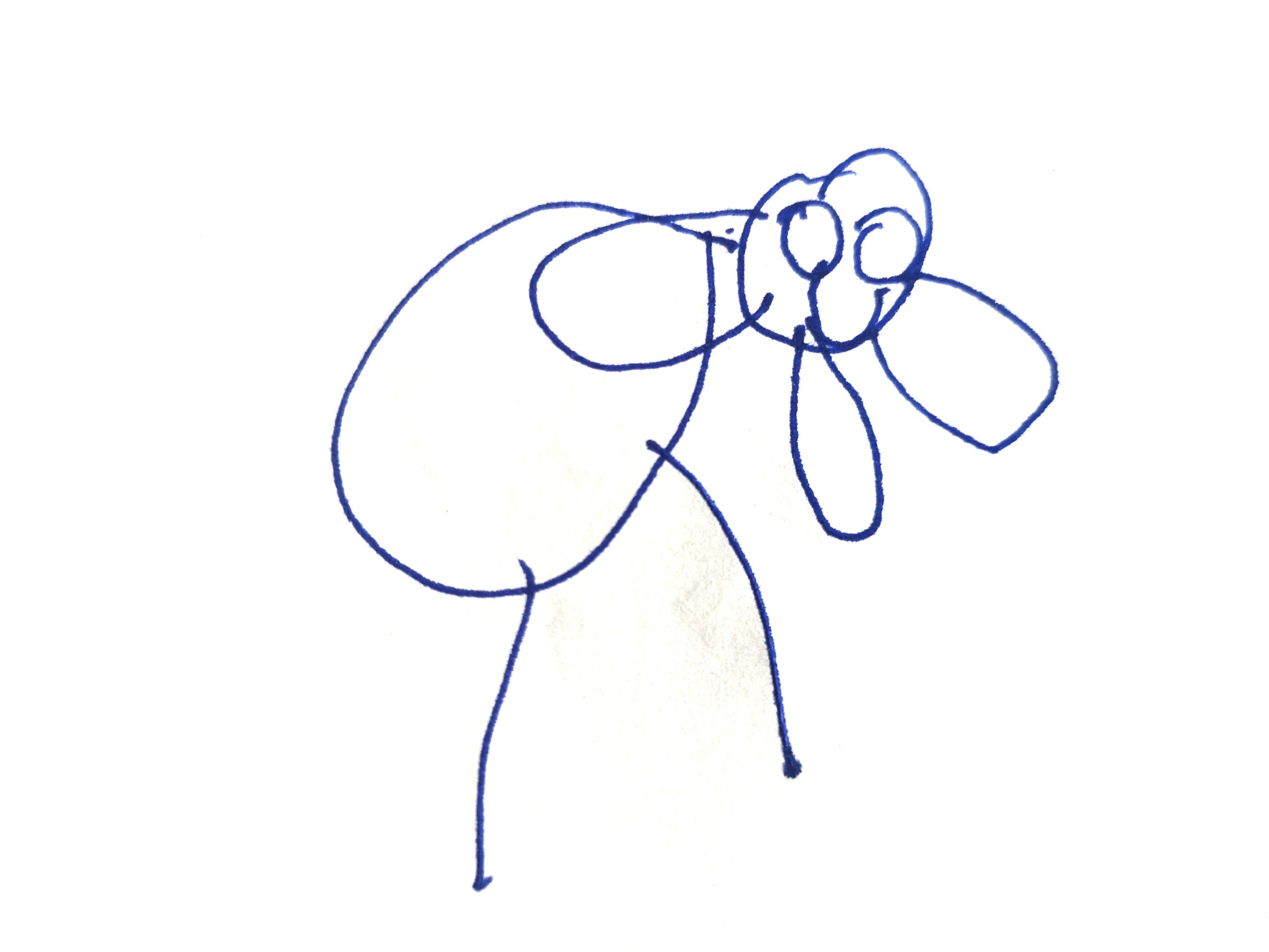 elefantblanco2.jpg