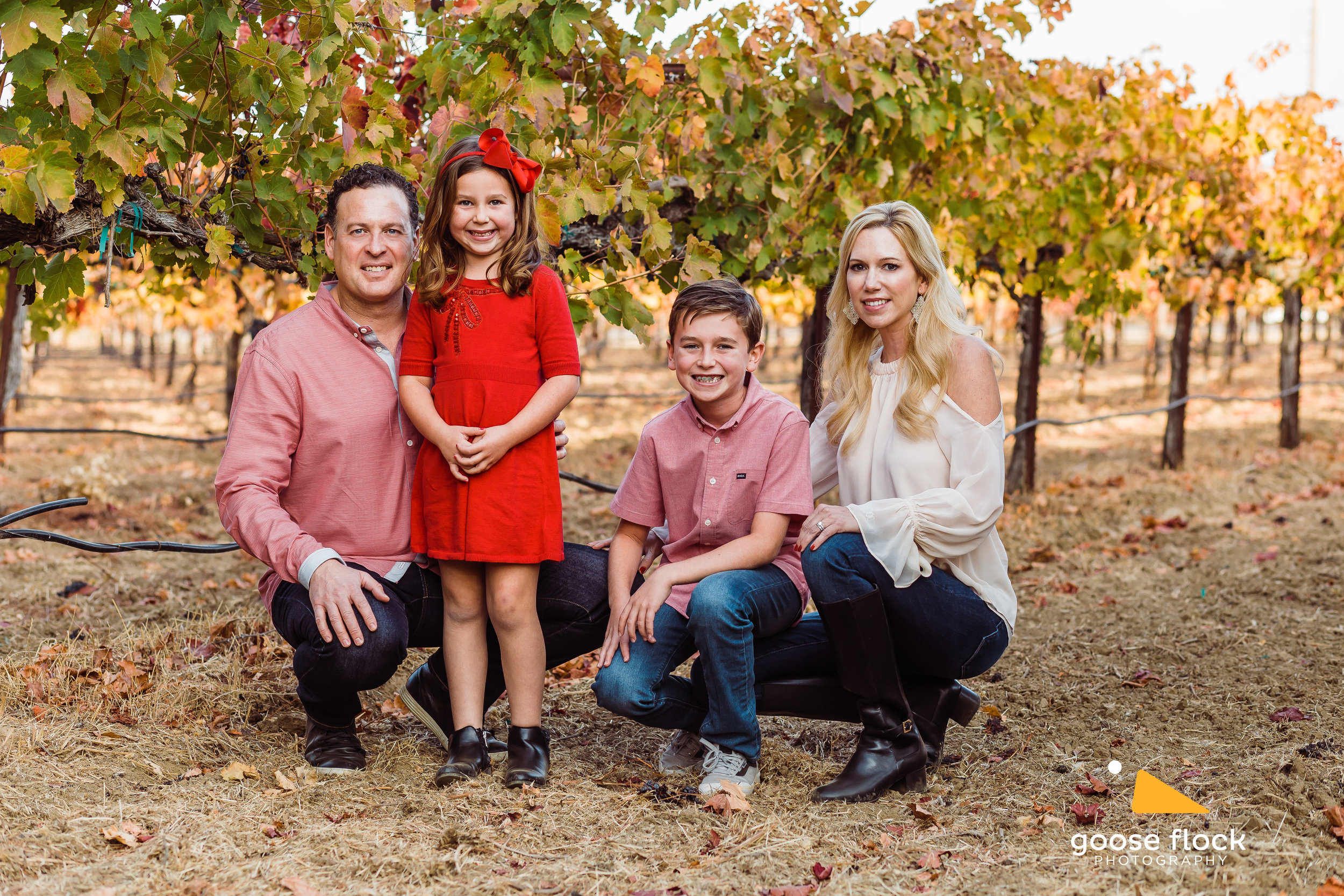 Family Portraits - Some of my favorite photoshoots are family portraits, because of the love I get to capture between parents and children. I have a lot of experience working with children from just a few months old all the way to teenagers