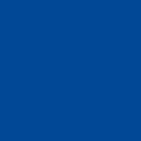 ECONOMIC VITALITY - focuses on business development, retention & recruitment