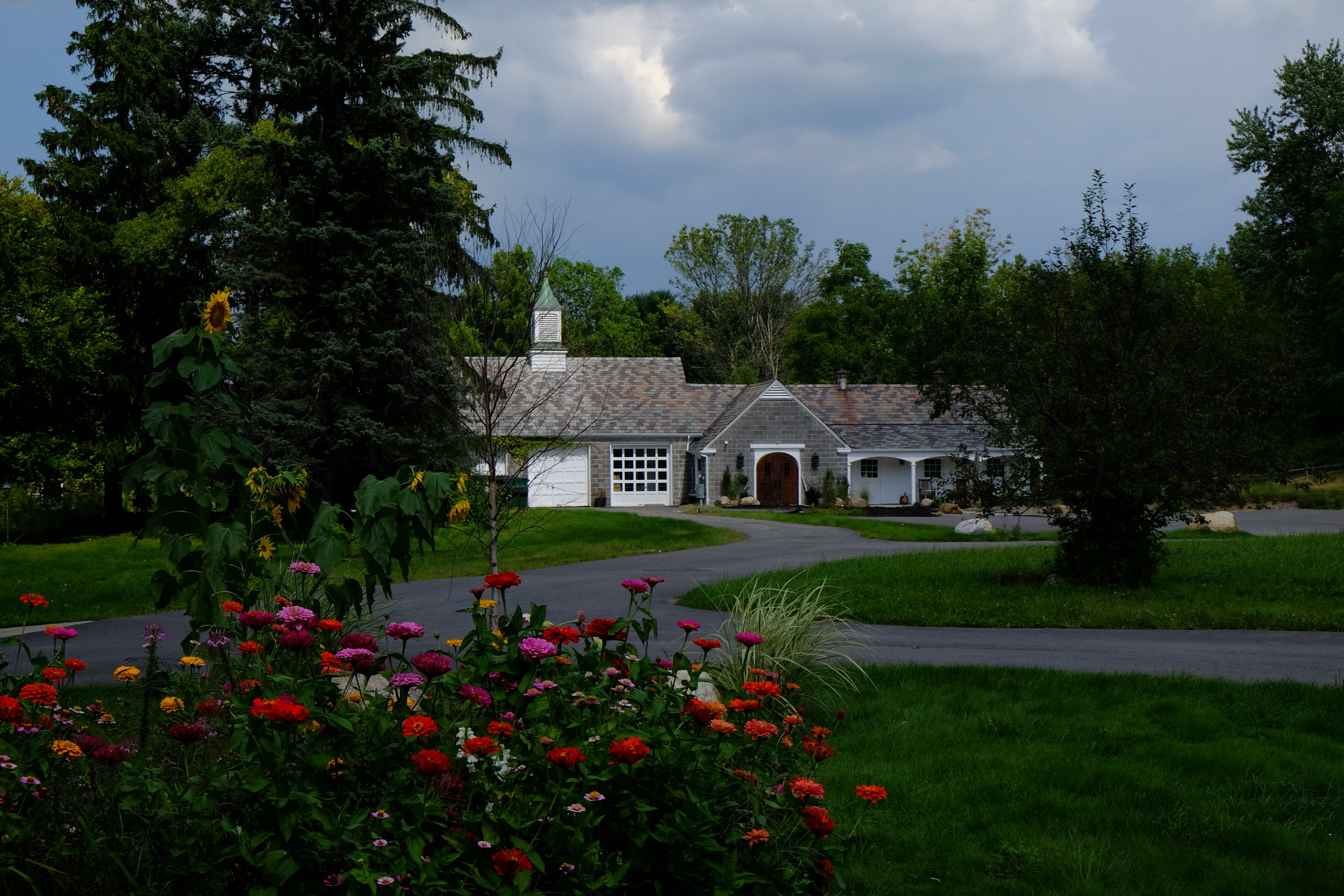 Stables and Spring flowers
