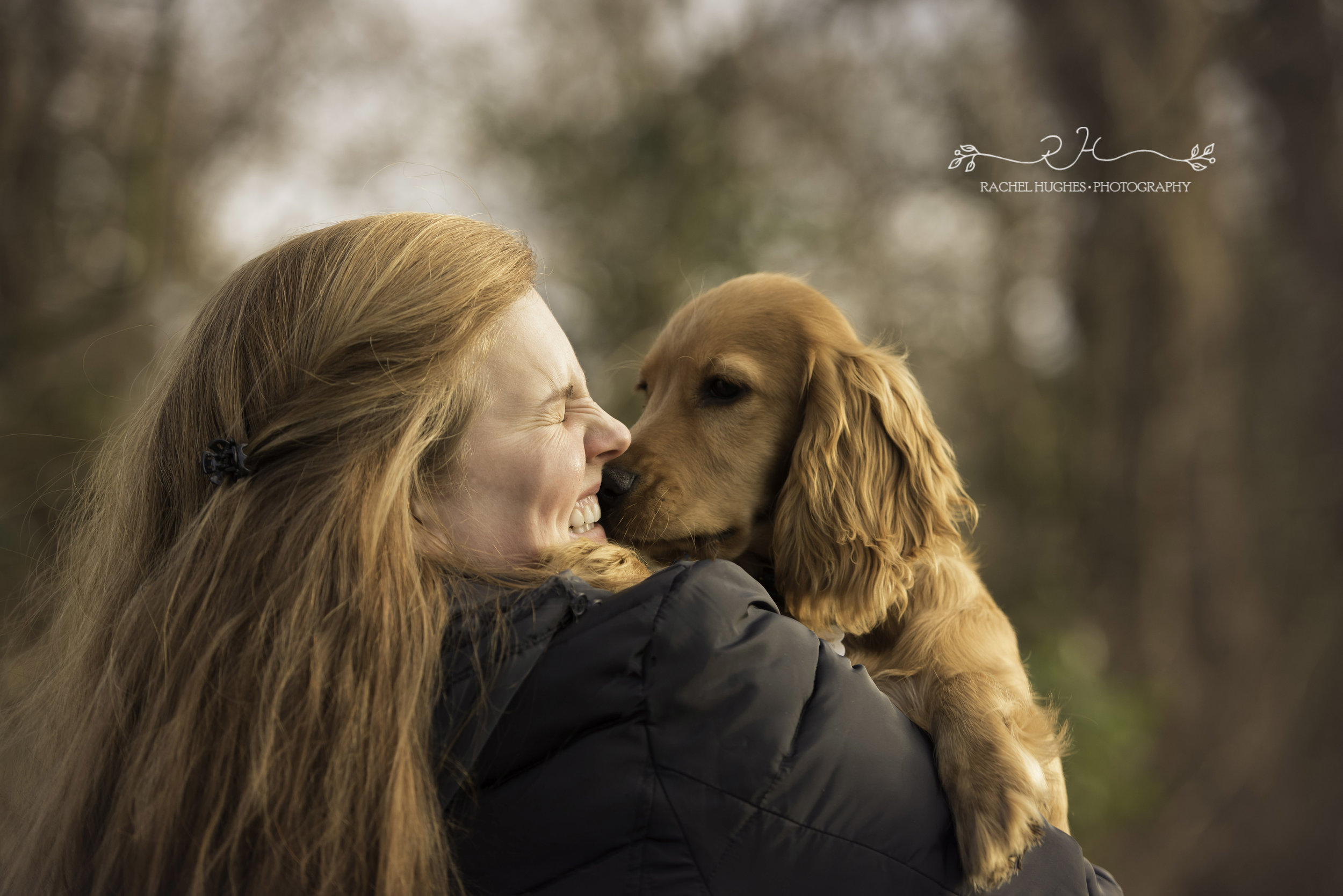 Outdoor pet photoshoot of golden spaniel puppy kissing owner.jpg