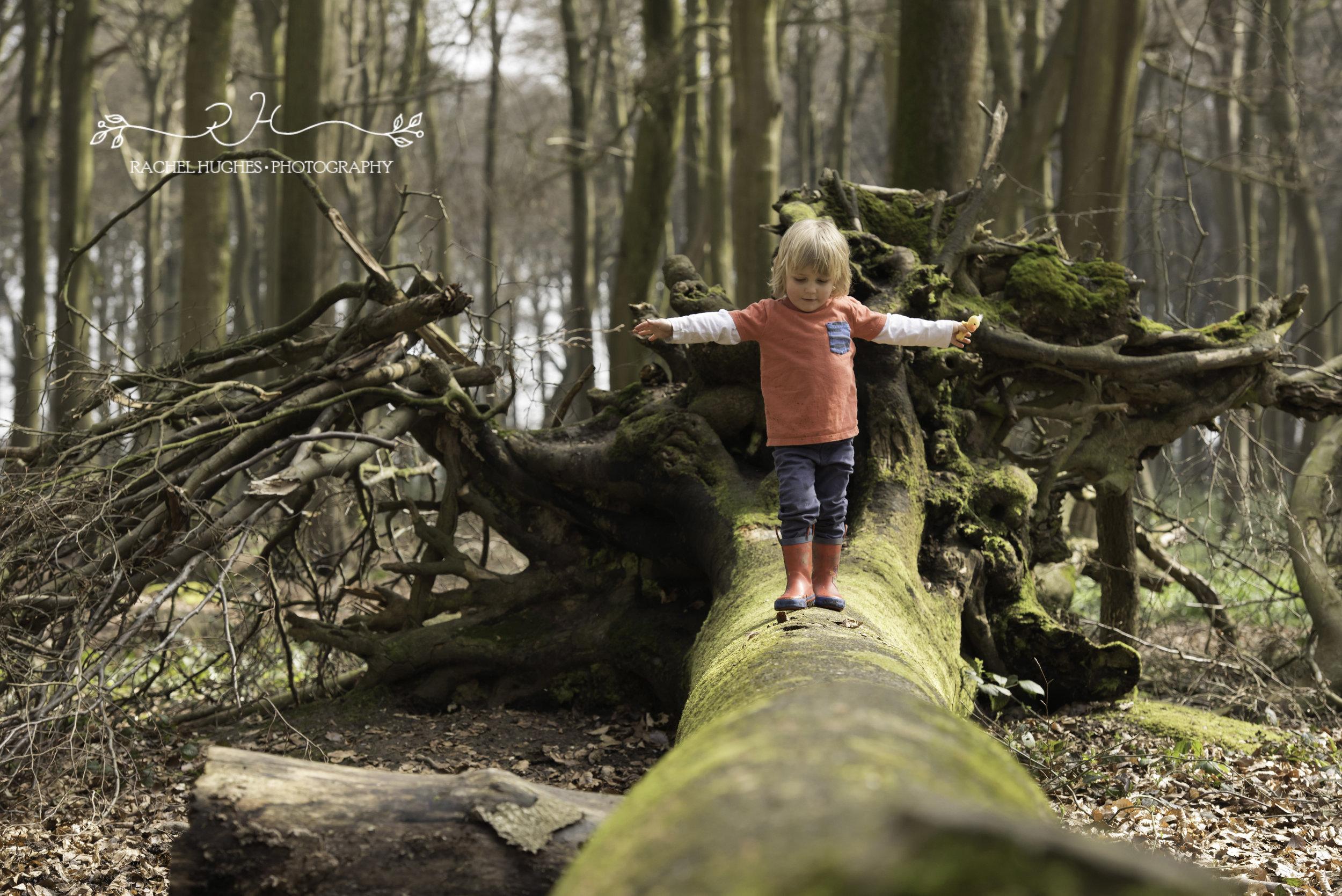 Boy balancing on tree