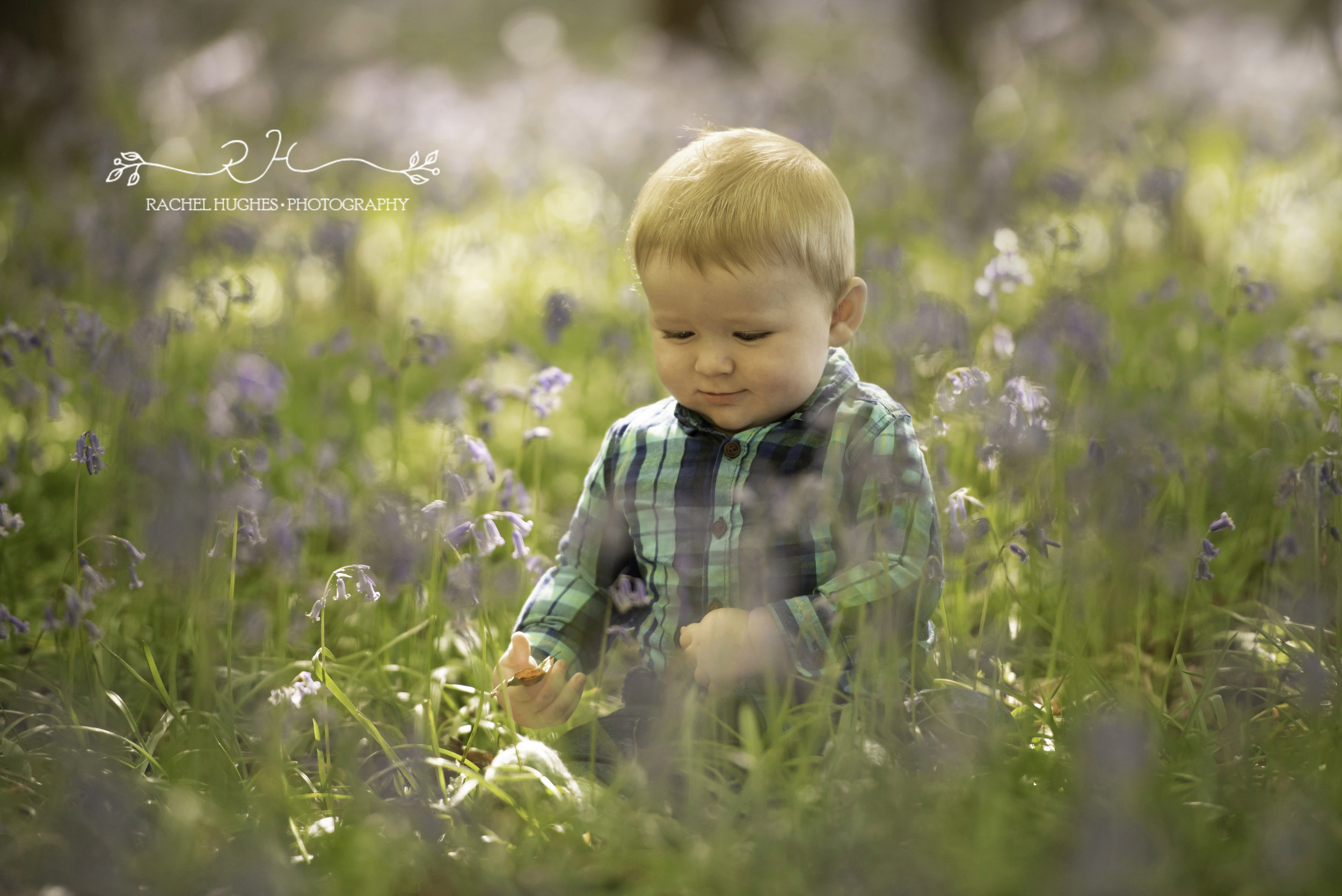 Baby in bluebells in Henley-on-Thames
