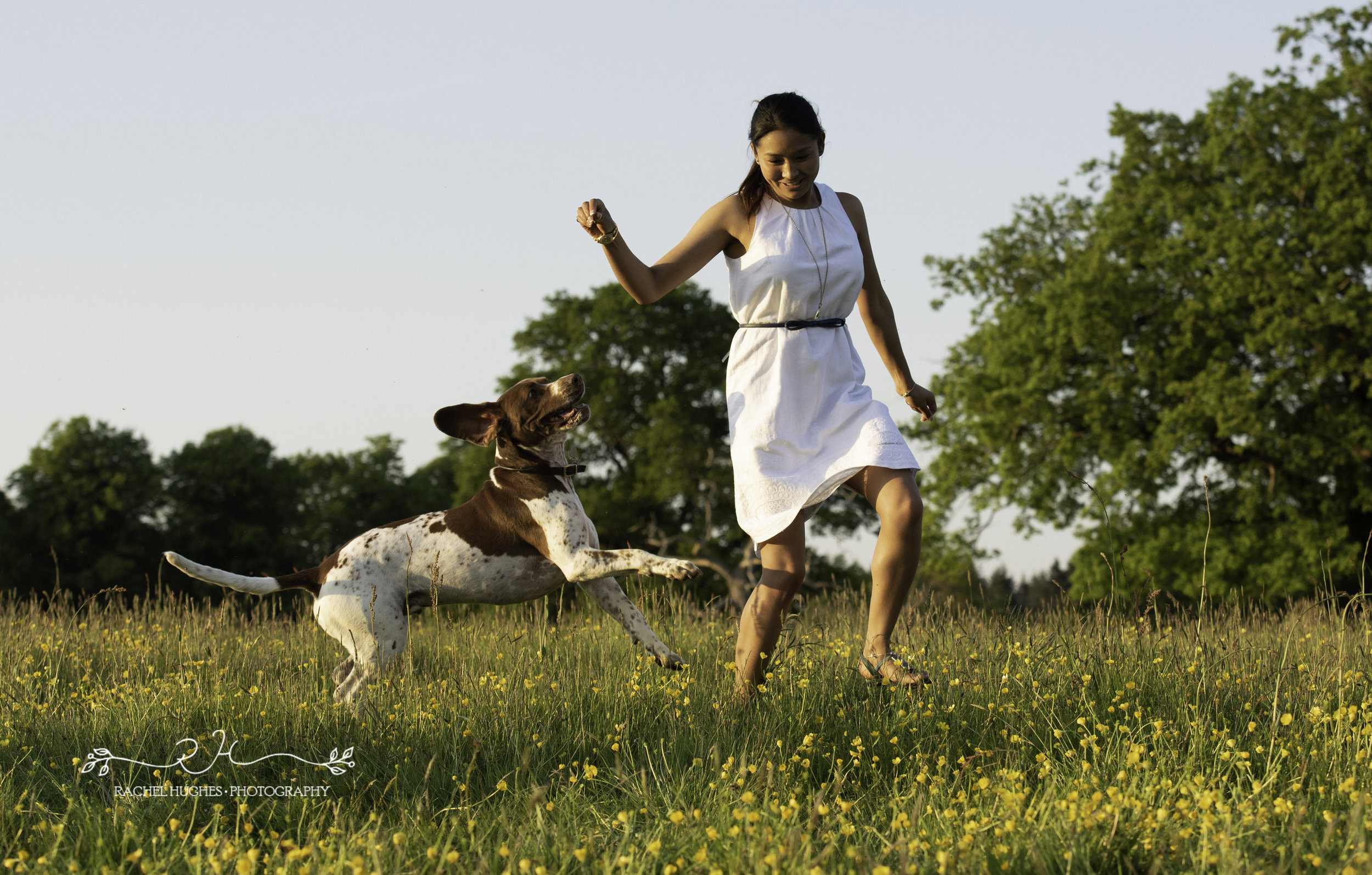 Jersey photographer - woman playing with her dog