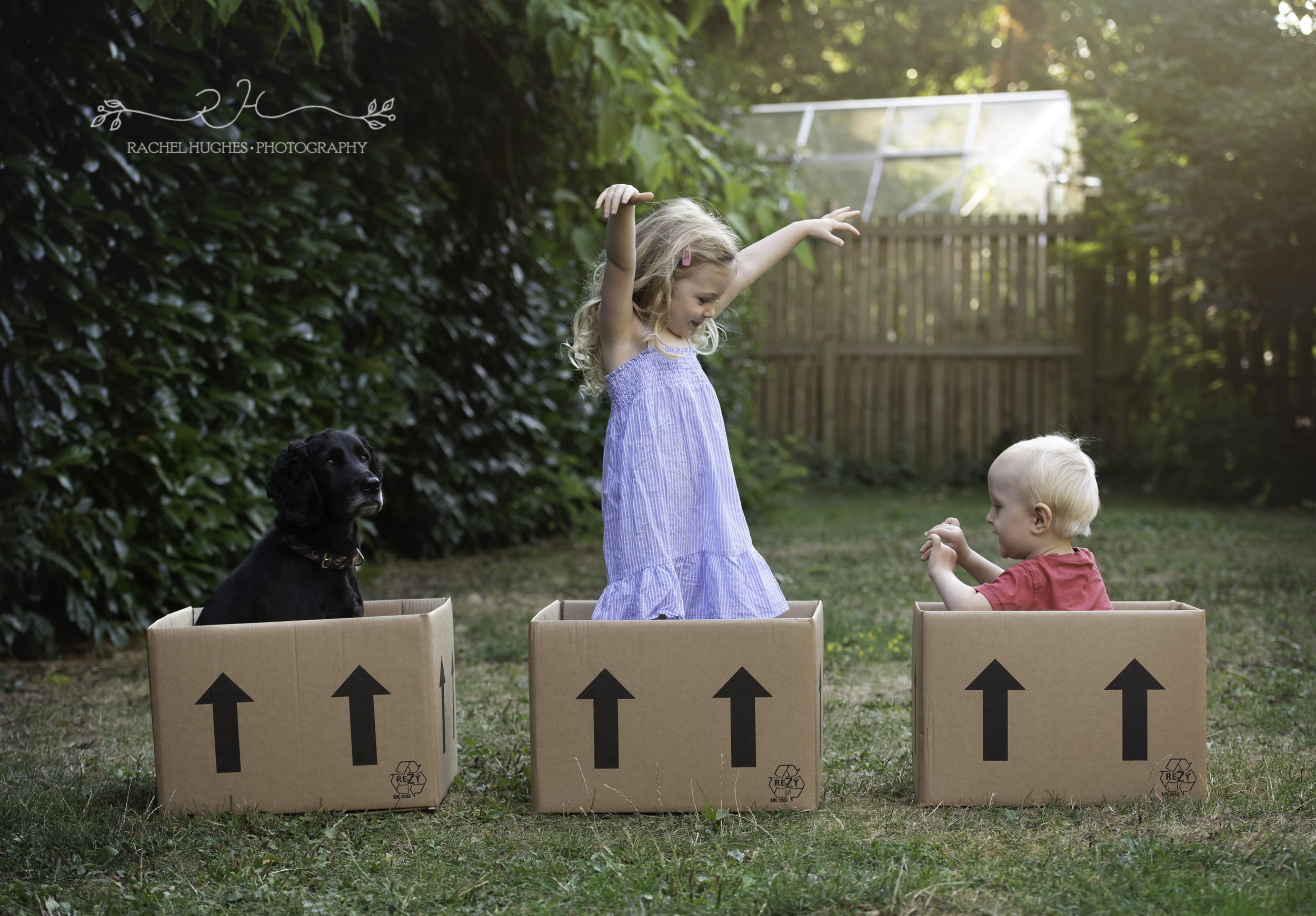 Jersey photographer - children in removals boxes