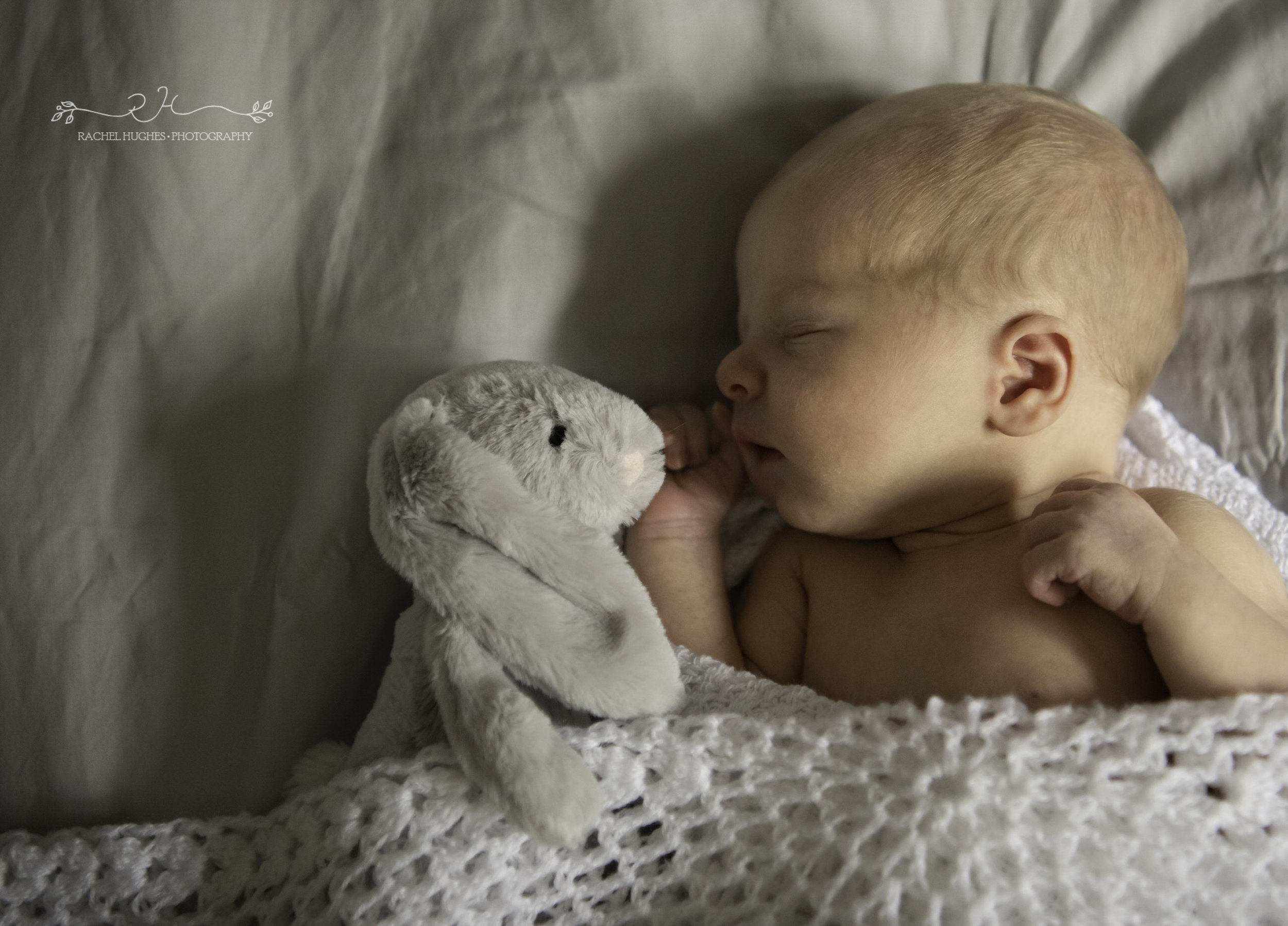 Jersey photographer - newborn at home with cuddly toy