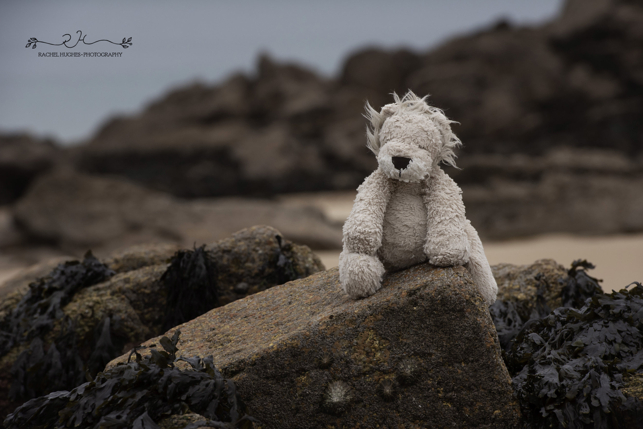 Jersey photographer: girl's favourite toy at Portelet Bay