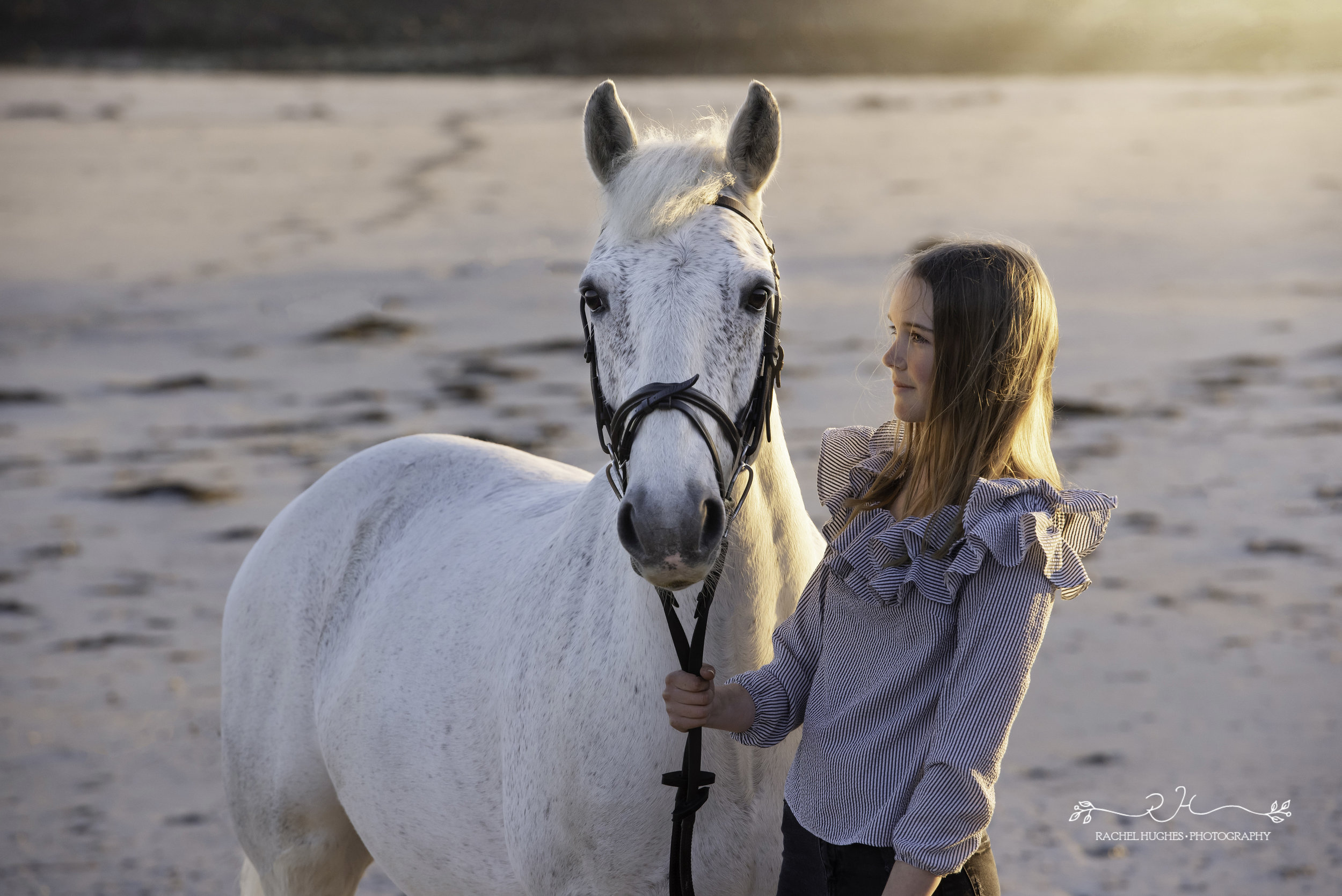 Jersey photographer - girl and horse on beach