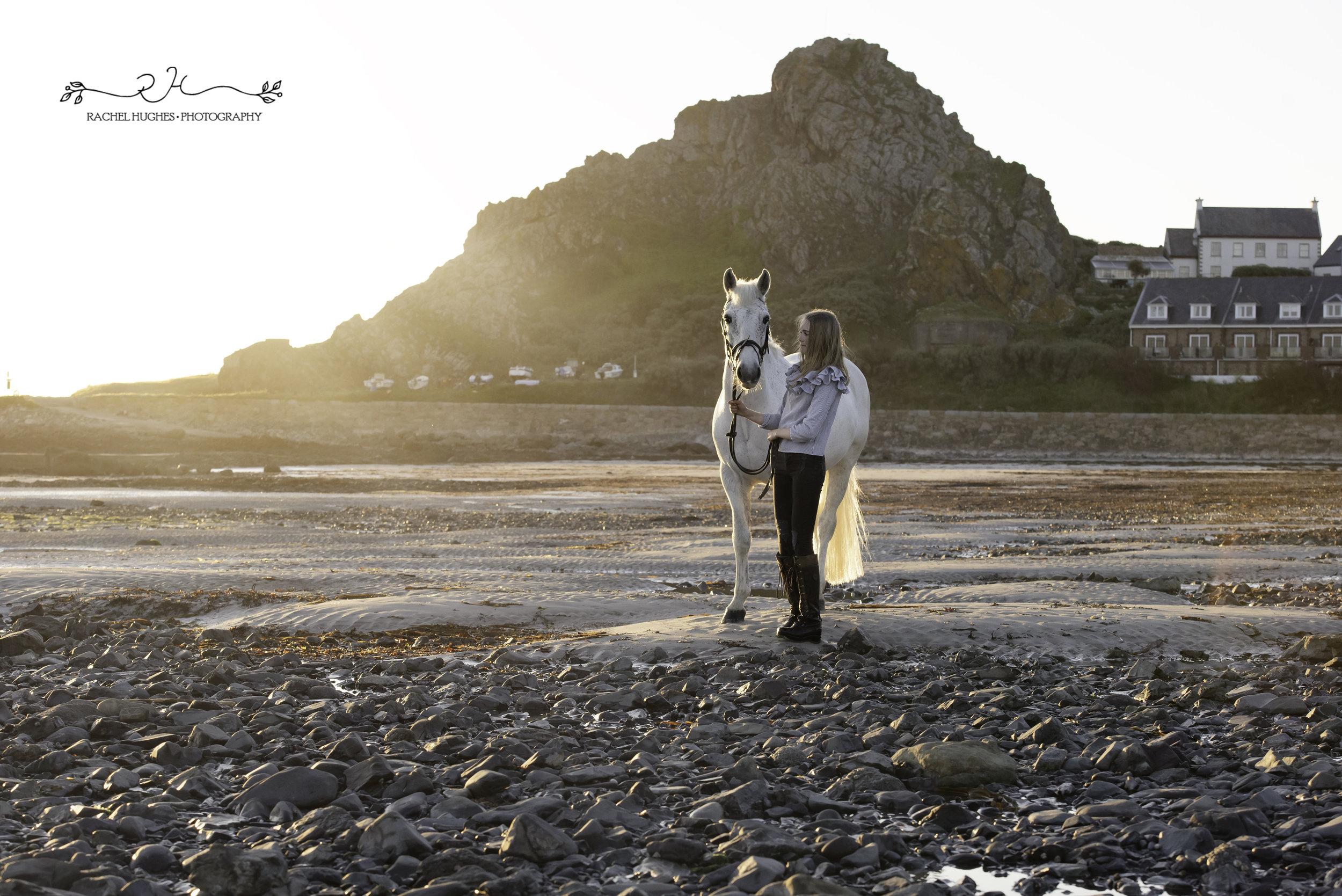 Jersey photographer - beach sunset horse photoshoot