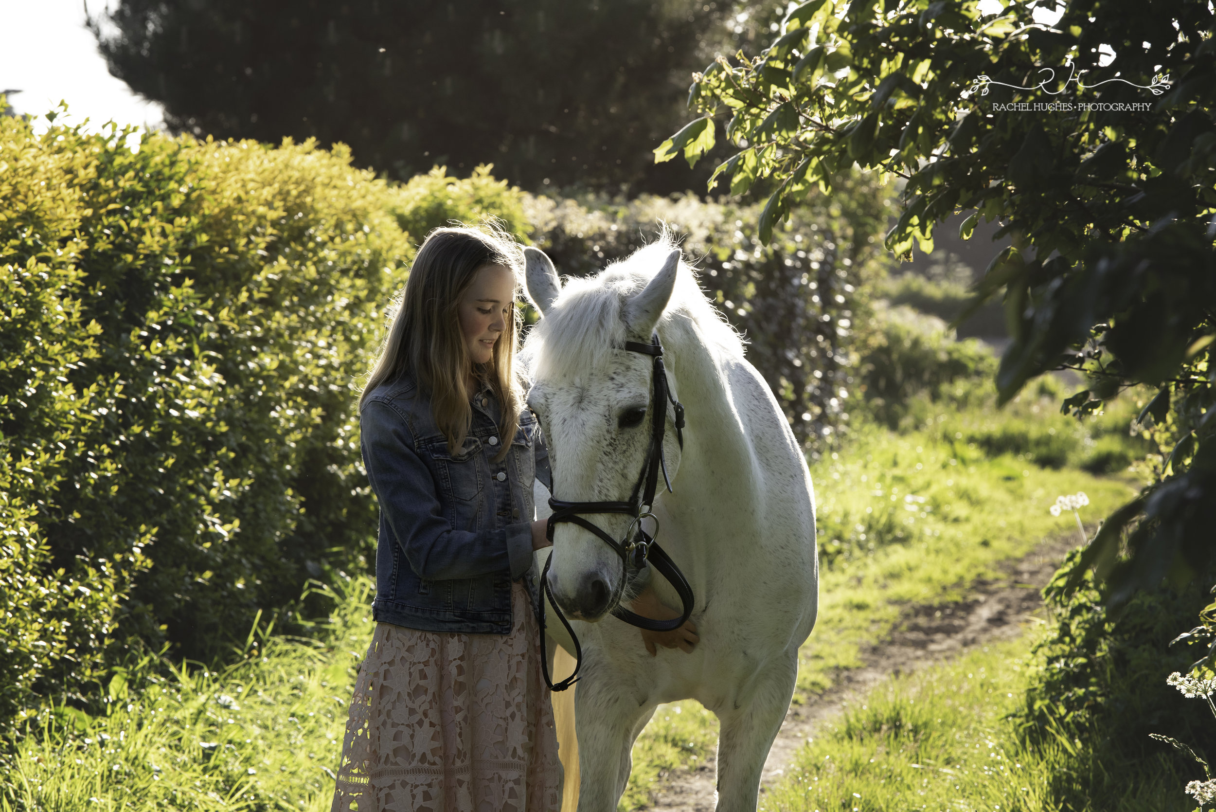 Jersey photographer - girl and horse in sunlit pathway