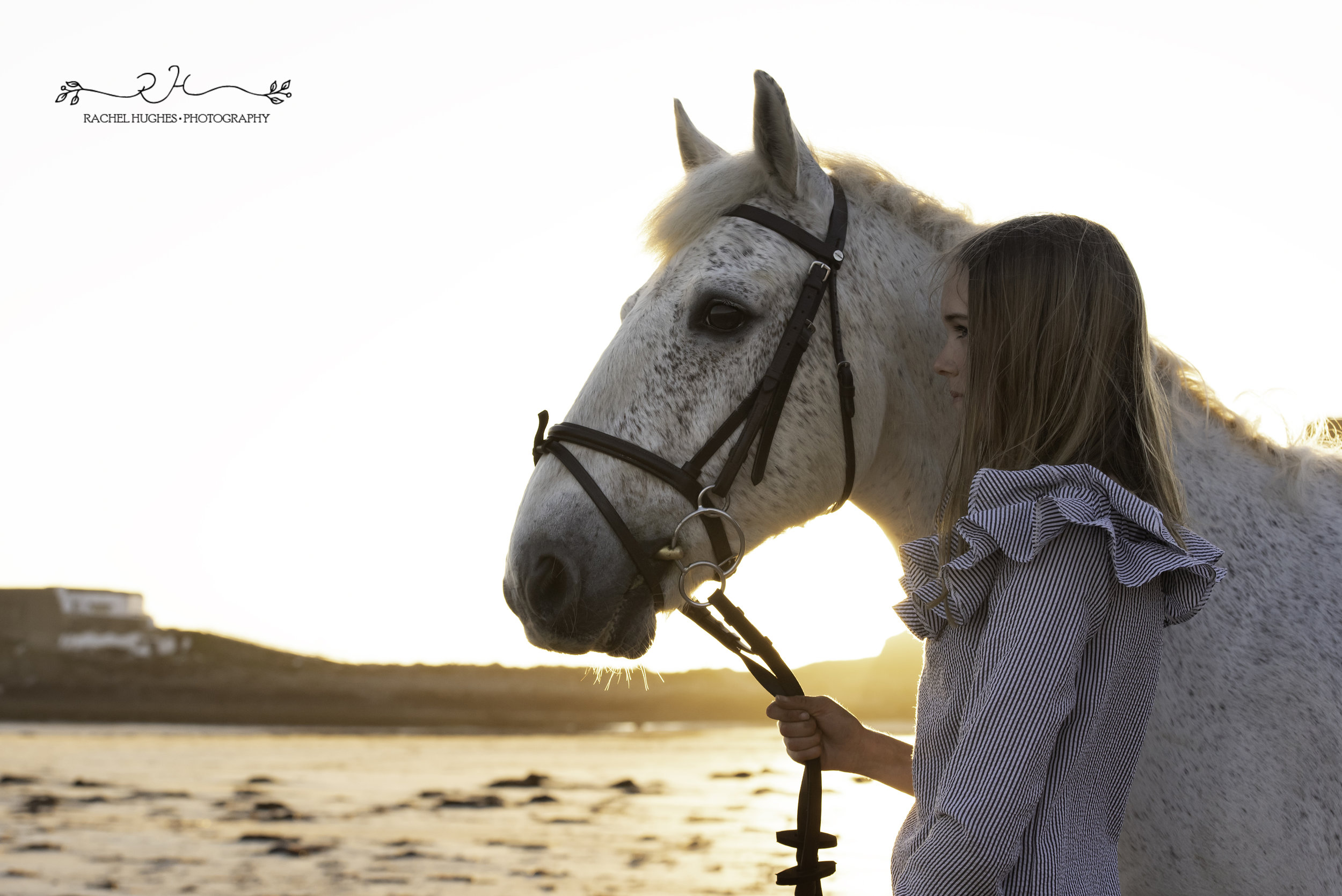 Jersey photographer - evening sunlight on girl and horse