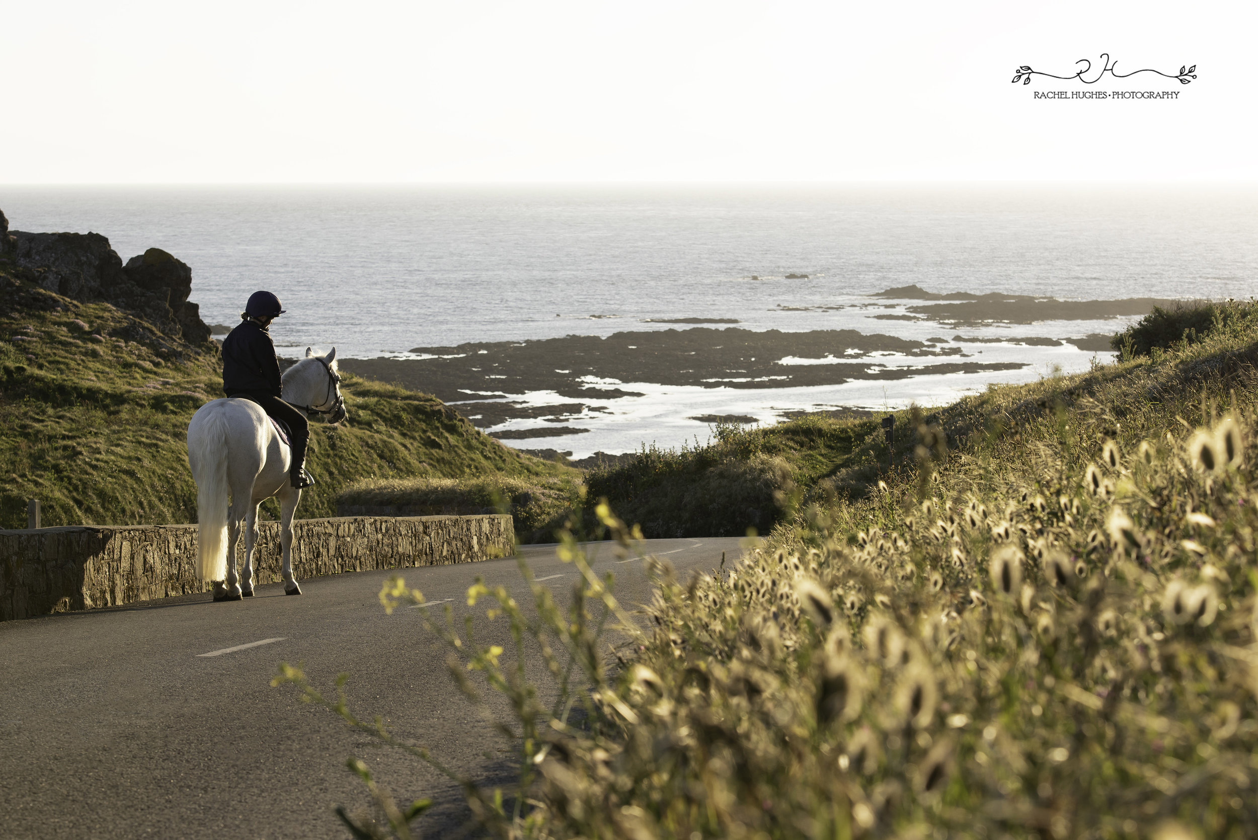 Jersey photographer - hacking at L'Etacq with horse