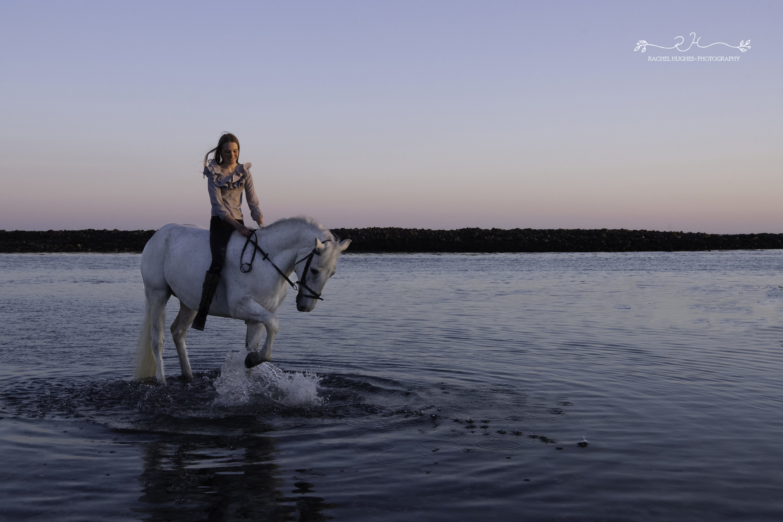 Jersey photographer - horse splashing at beach