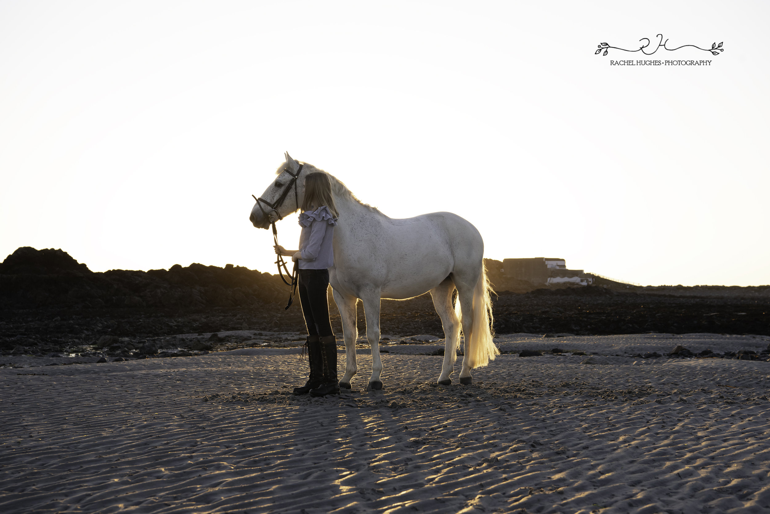 Jersey photographer - girl wearing casual clothes with horse