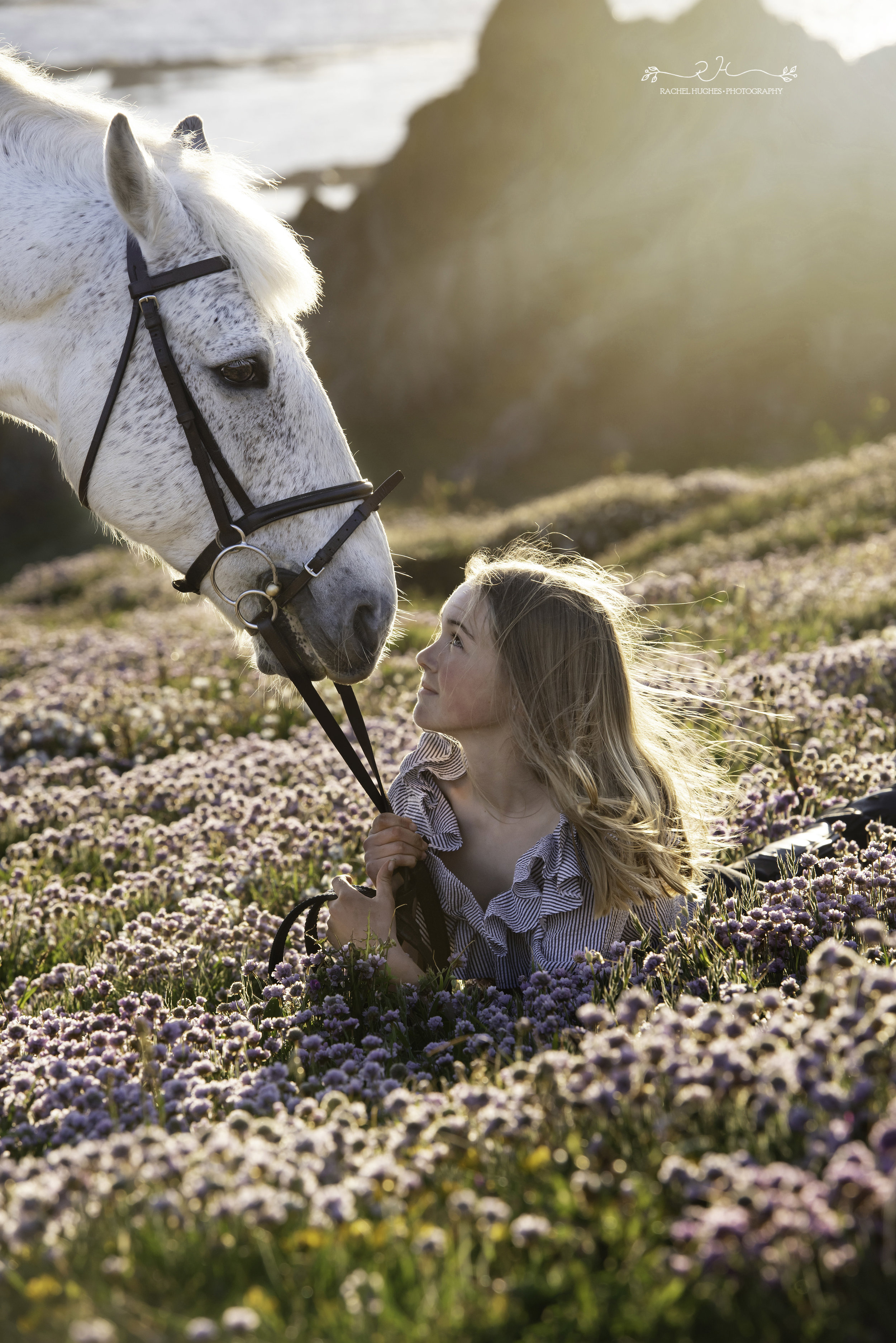 Jersey photographer - girl looking up at horse in sea pink flowers