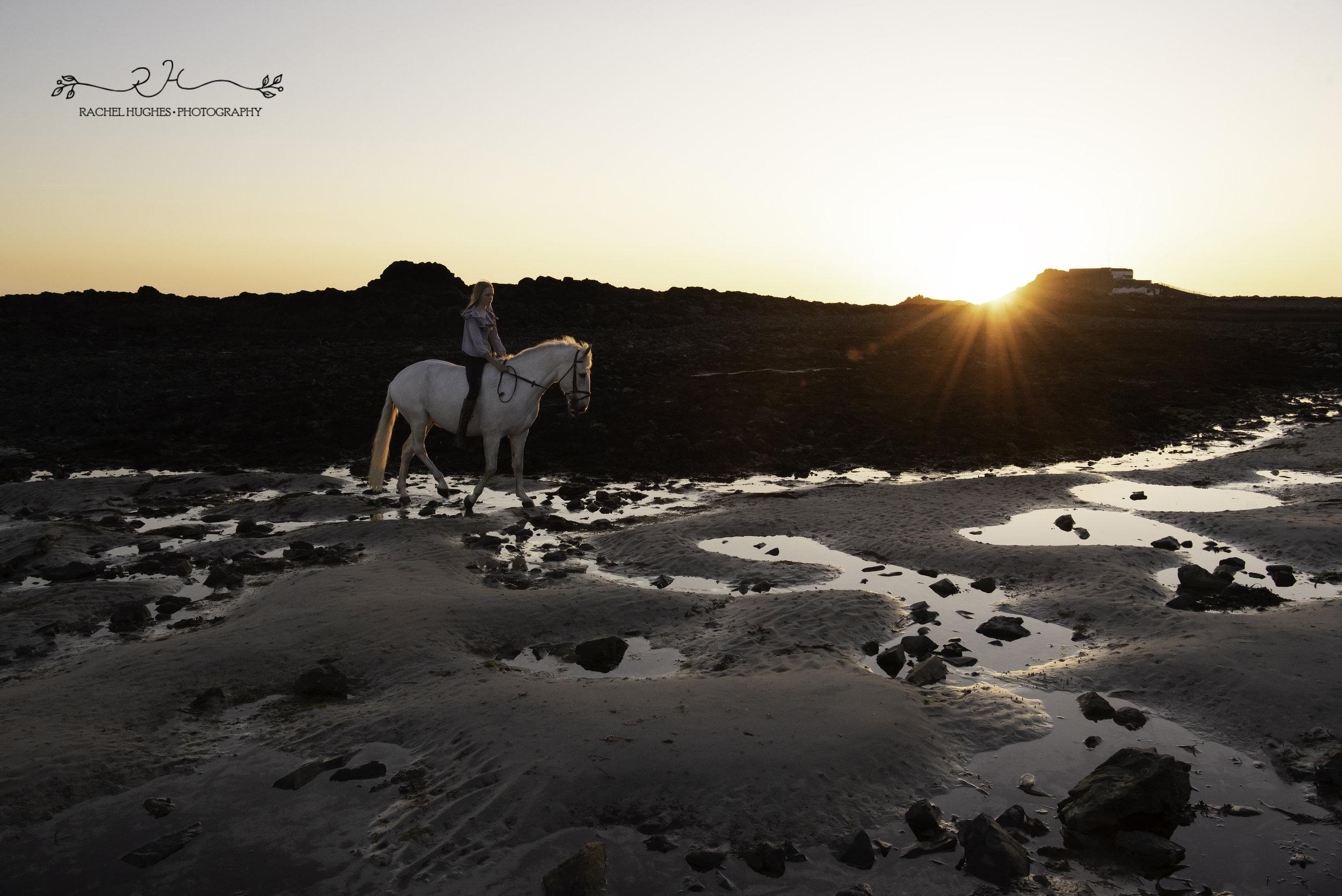 Jersey photographer - sun flare on horse beach photoshoot