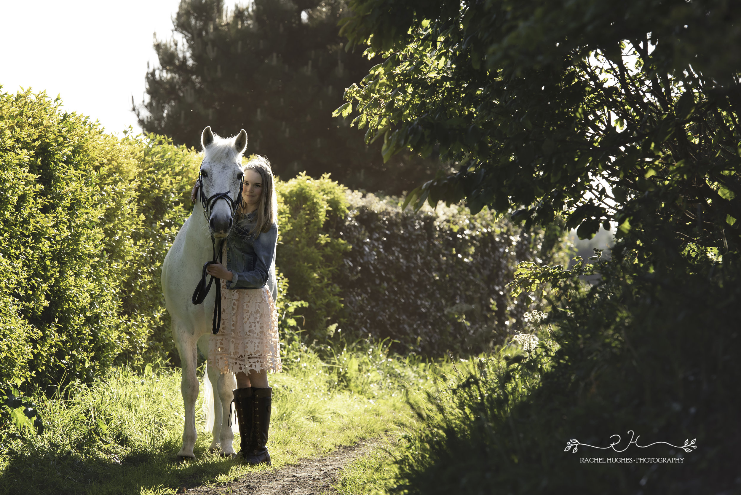 Jersey photographer - horse photoshoot in Jersey