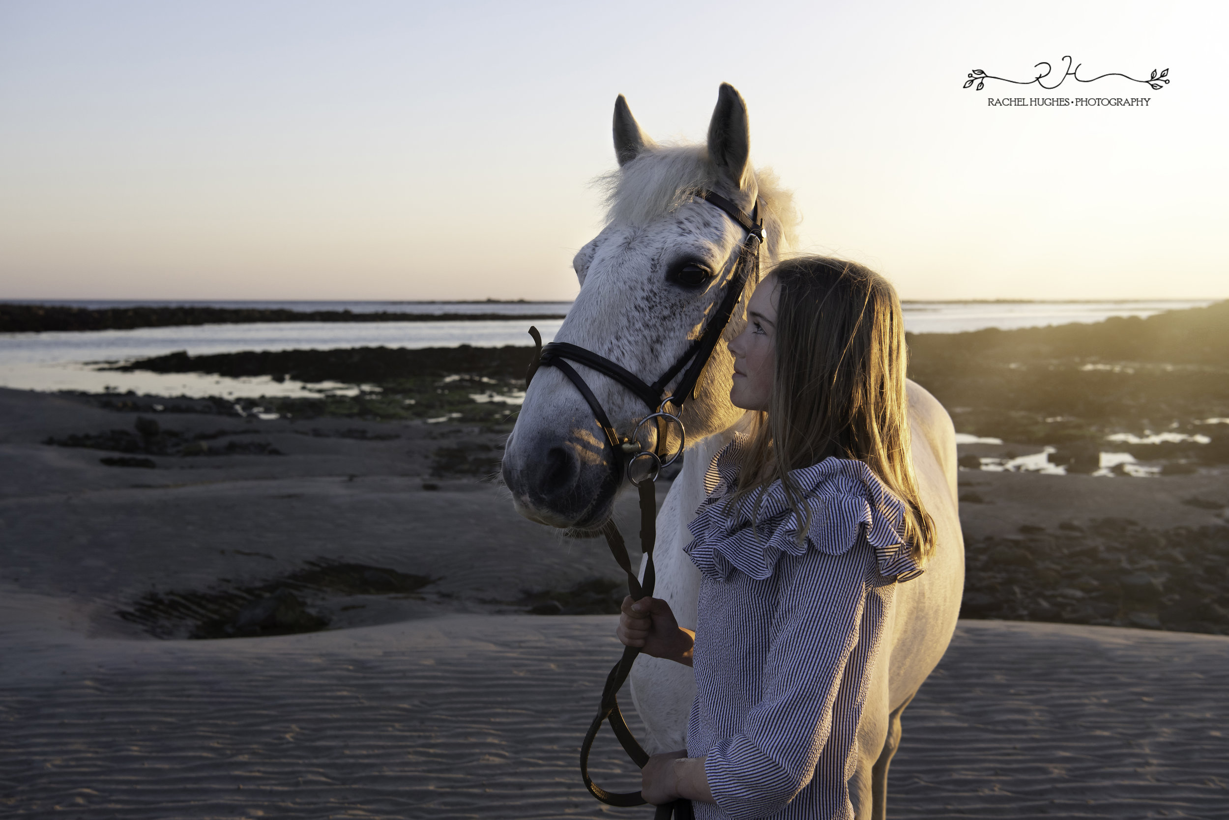 Jersey photographer -girl gazing at her horse