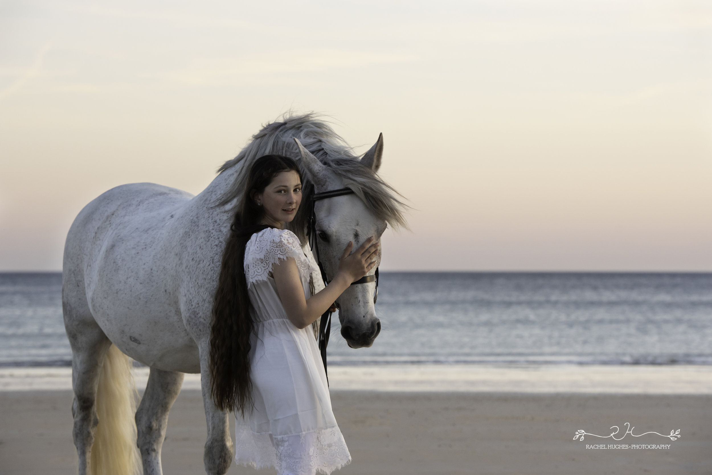 Jersey photographer - girl holding horse at sunset