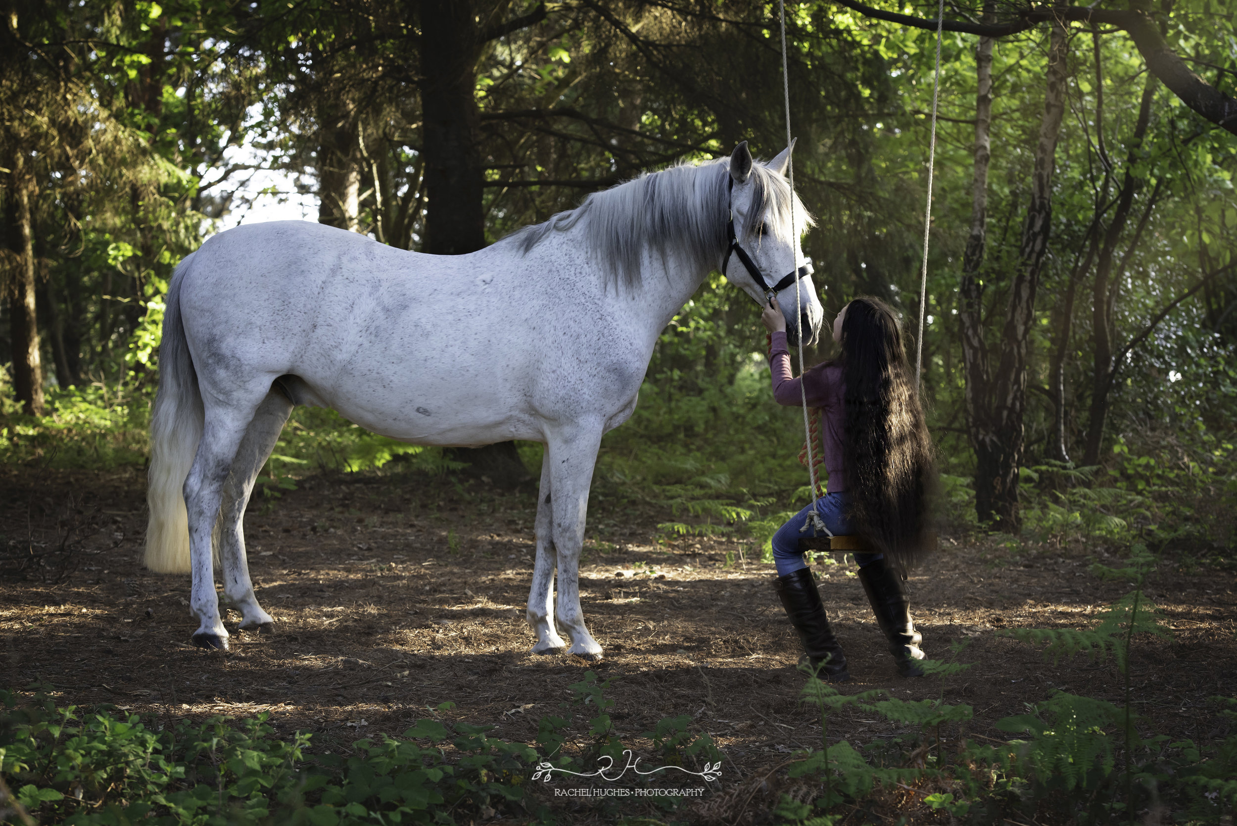 Jersey photographer - girl on forest swing next to horse
