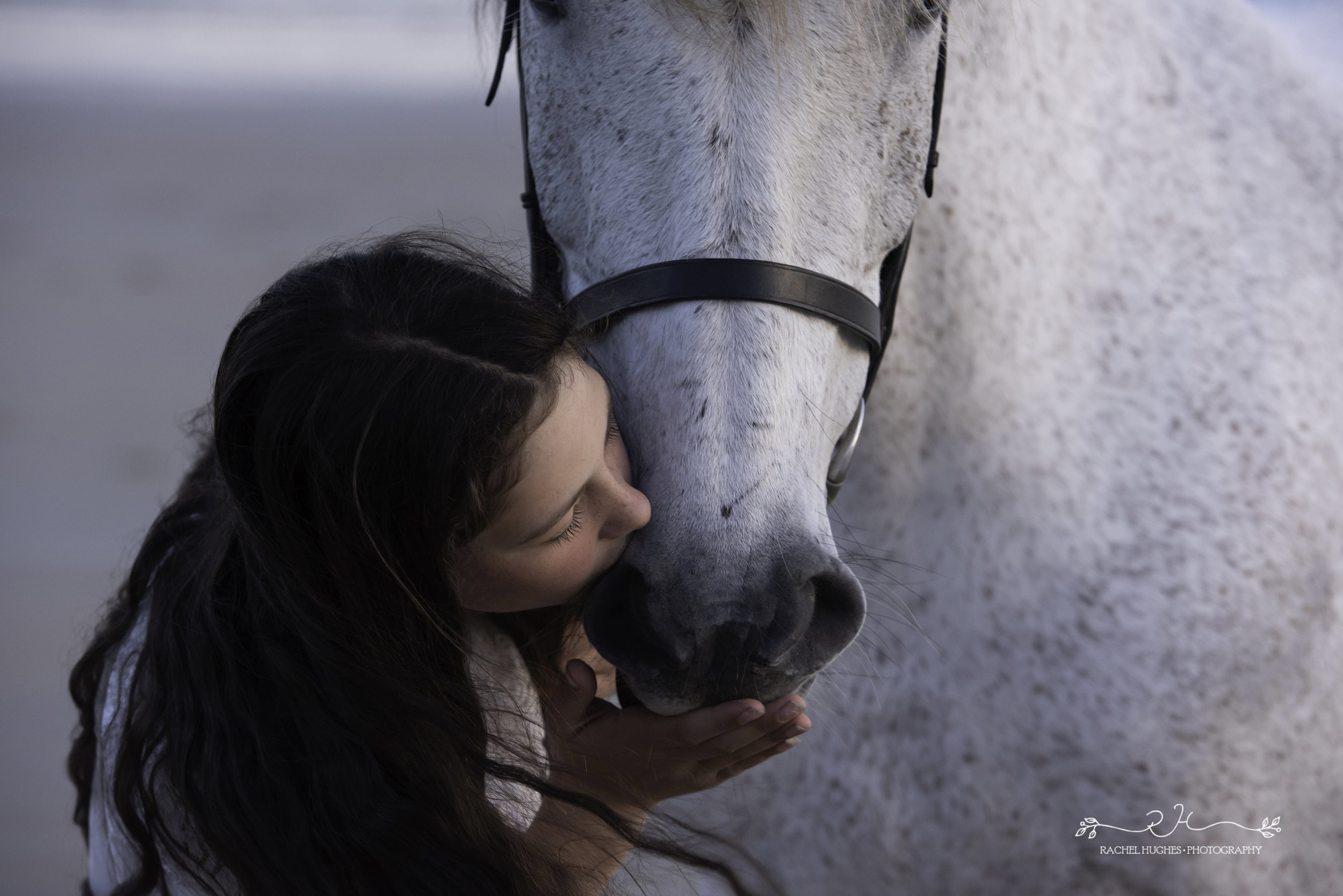 Jersey photographer - girl kissing horse