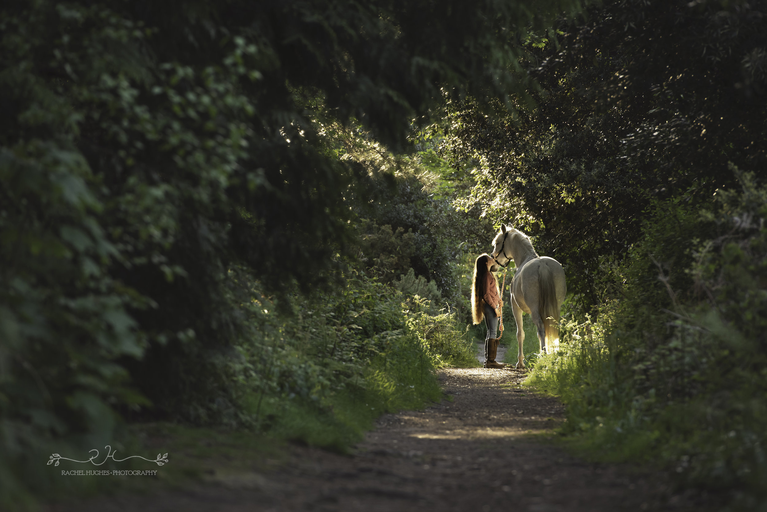 Jersey photographer - girl and horse in sunlit forest path