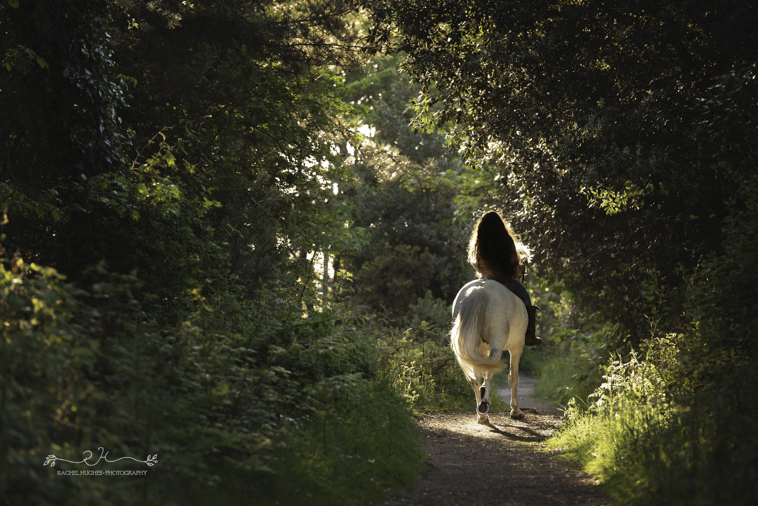 Jersey photographer - girl and horse walking through forest at Noirmont