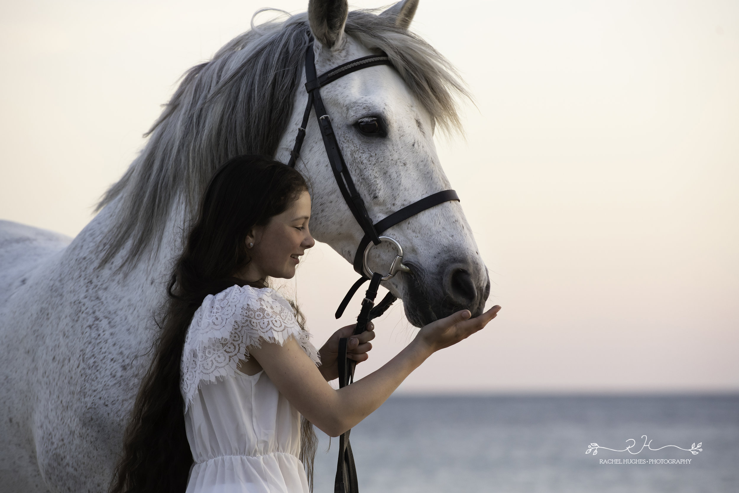 Jersey photographer - girl gently holding her horse at Ouaisne Bay