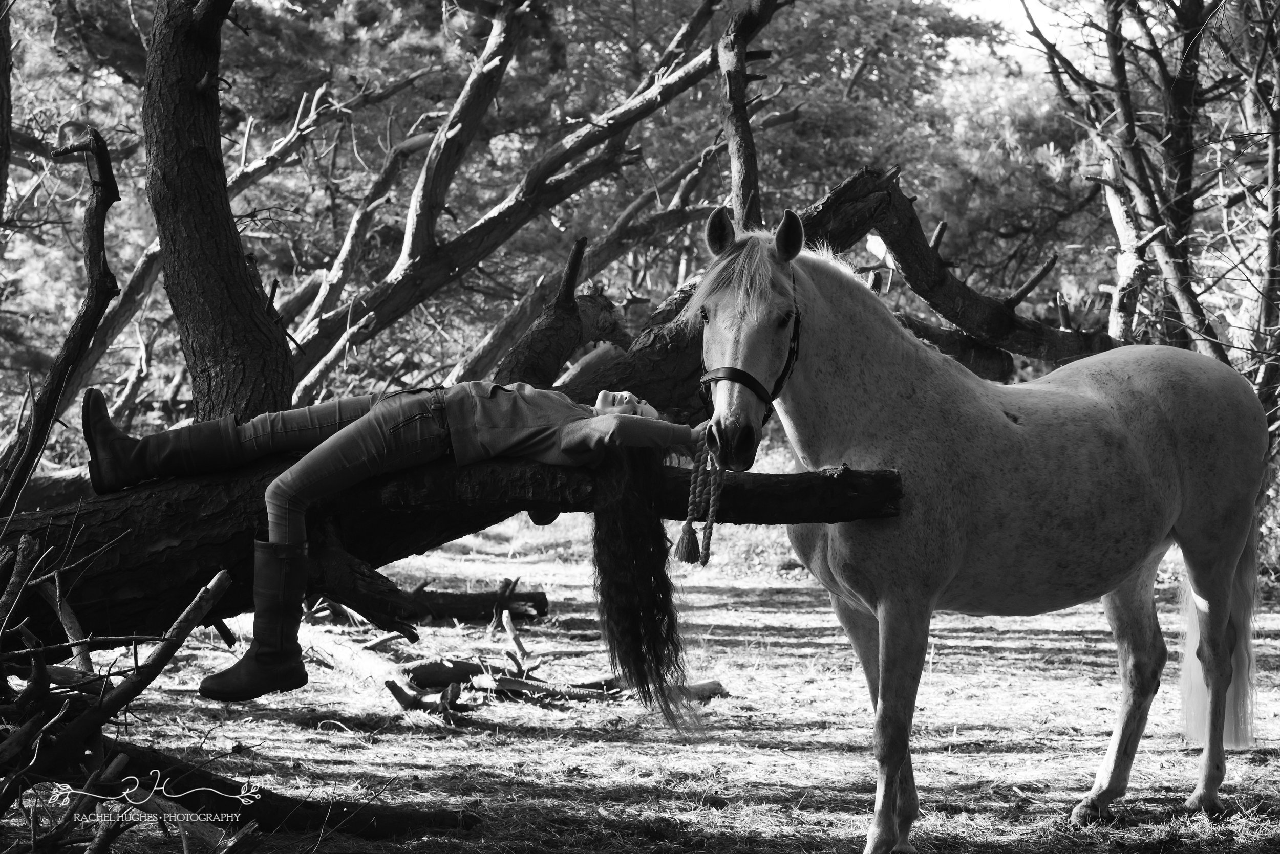Jersey photographer - girl lying on tree next to horse