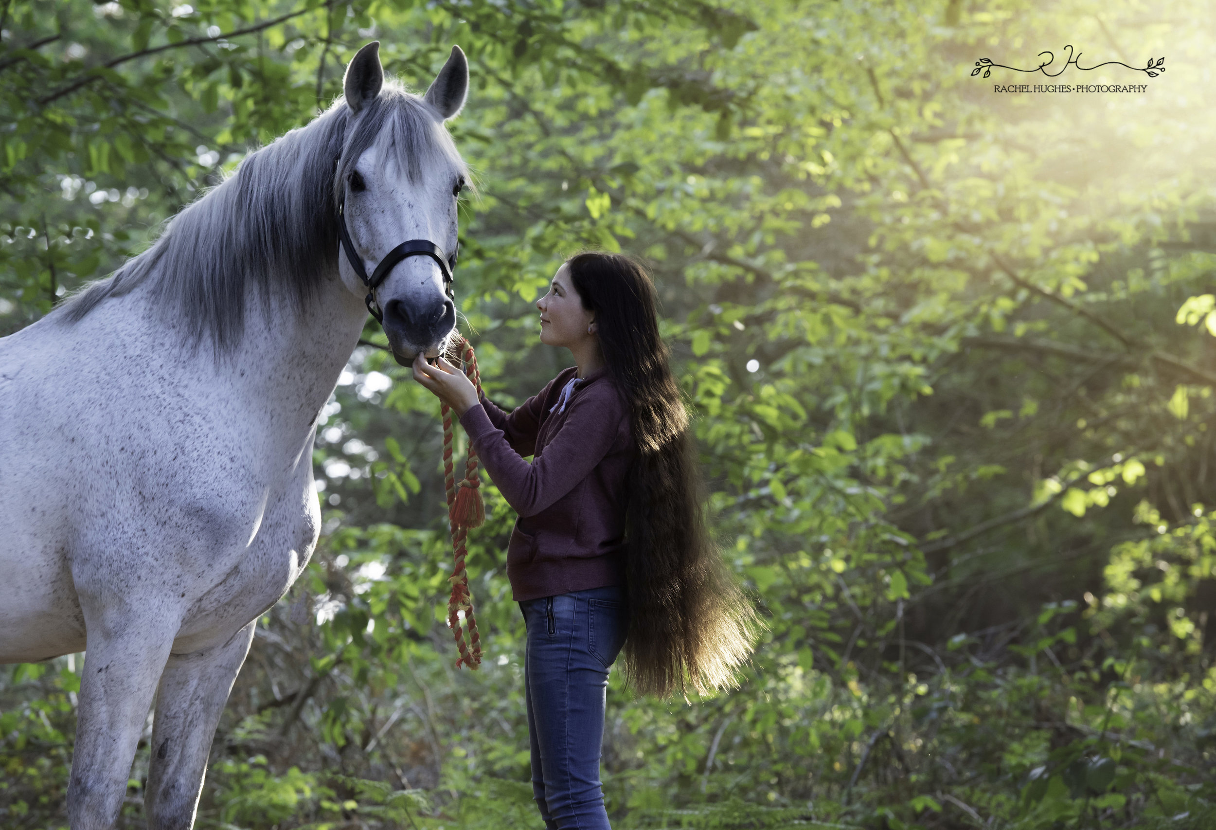 Jersey photographer - girl looking up at her horse in forest
