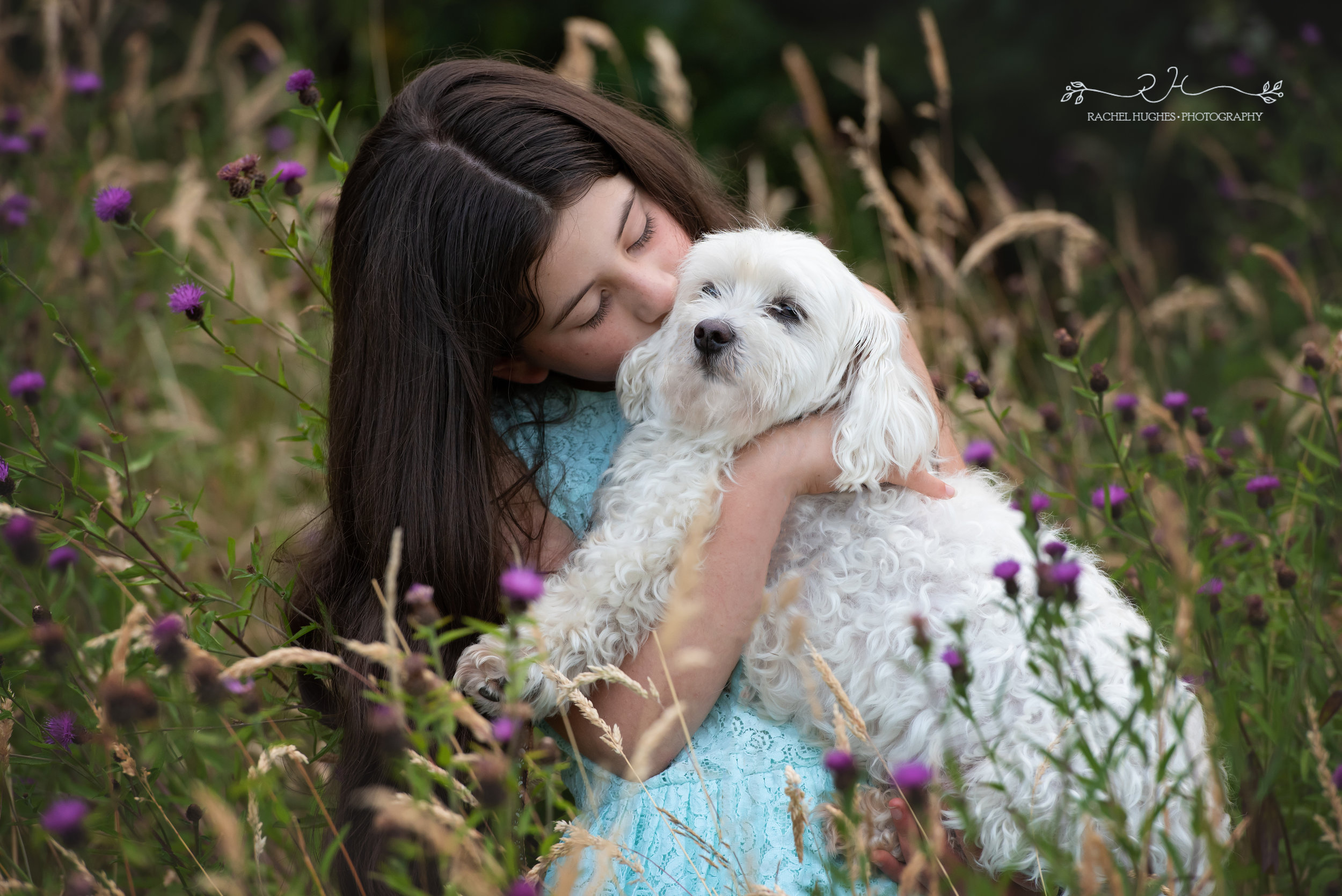 Jersey photographer - girl and her dog in wildflowers