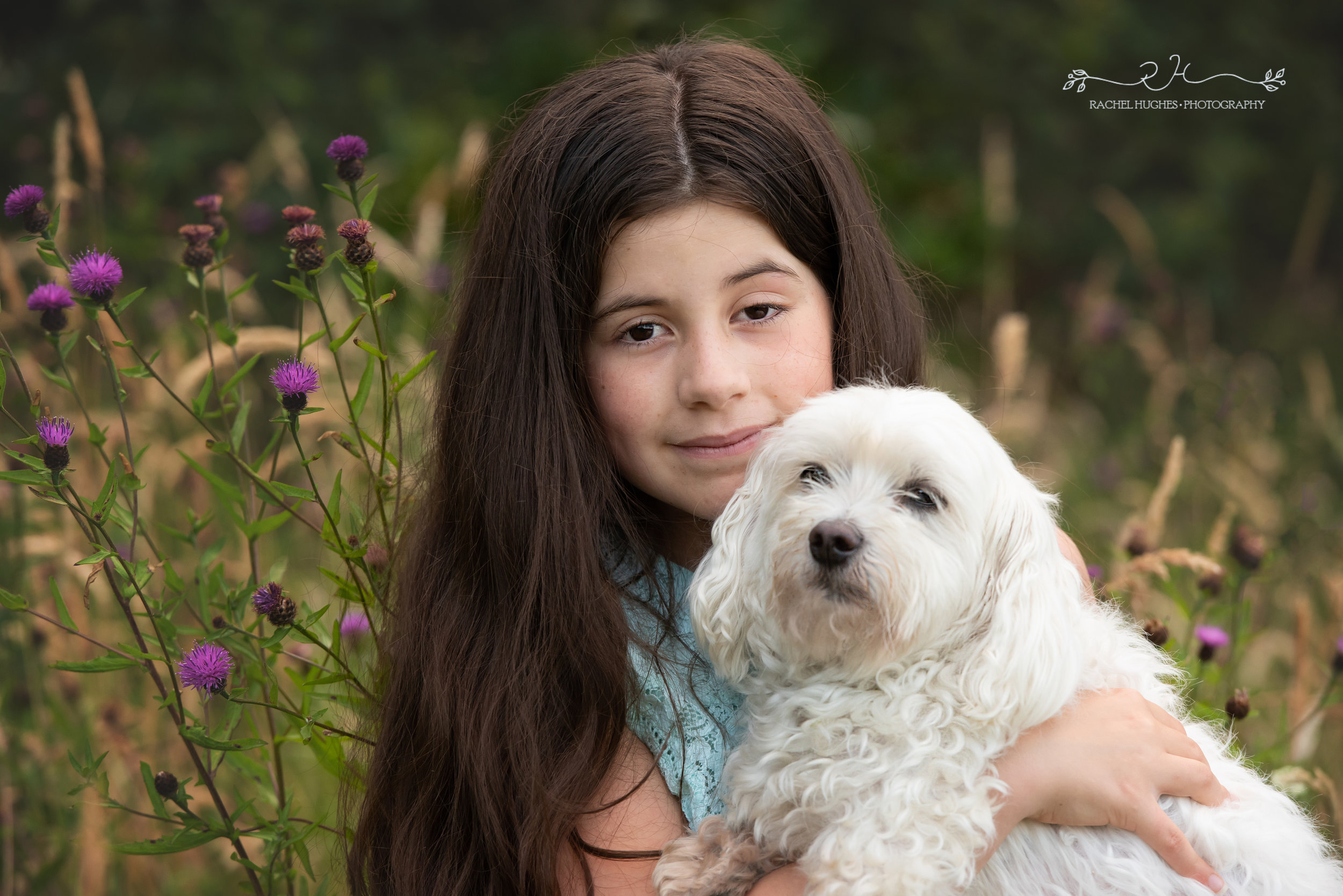 Jersey photographer - girl cuddling her dog in wildflowers