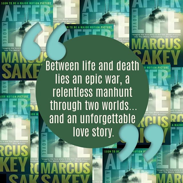 I paused more than once to think of him as an author, imagining the time it took and the excruciating process he must have gone through to get these ideas on the page. Blog link in bio. #read #reading #readinglist #afterlife #author #betweensouls