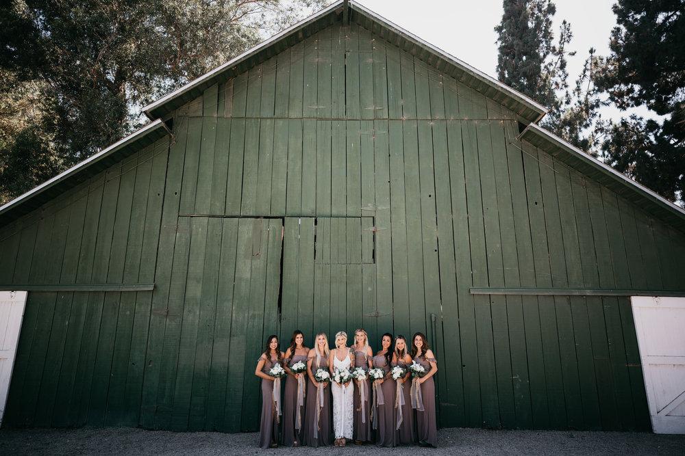1869b-devlinwedding_bridesmaids3.jpg