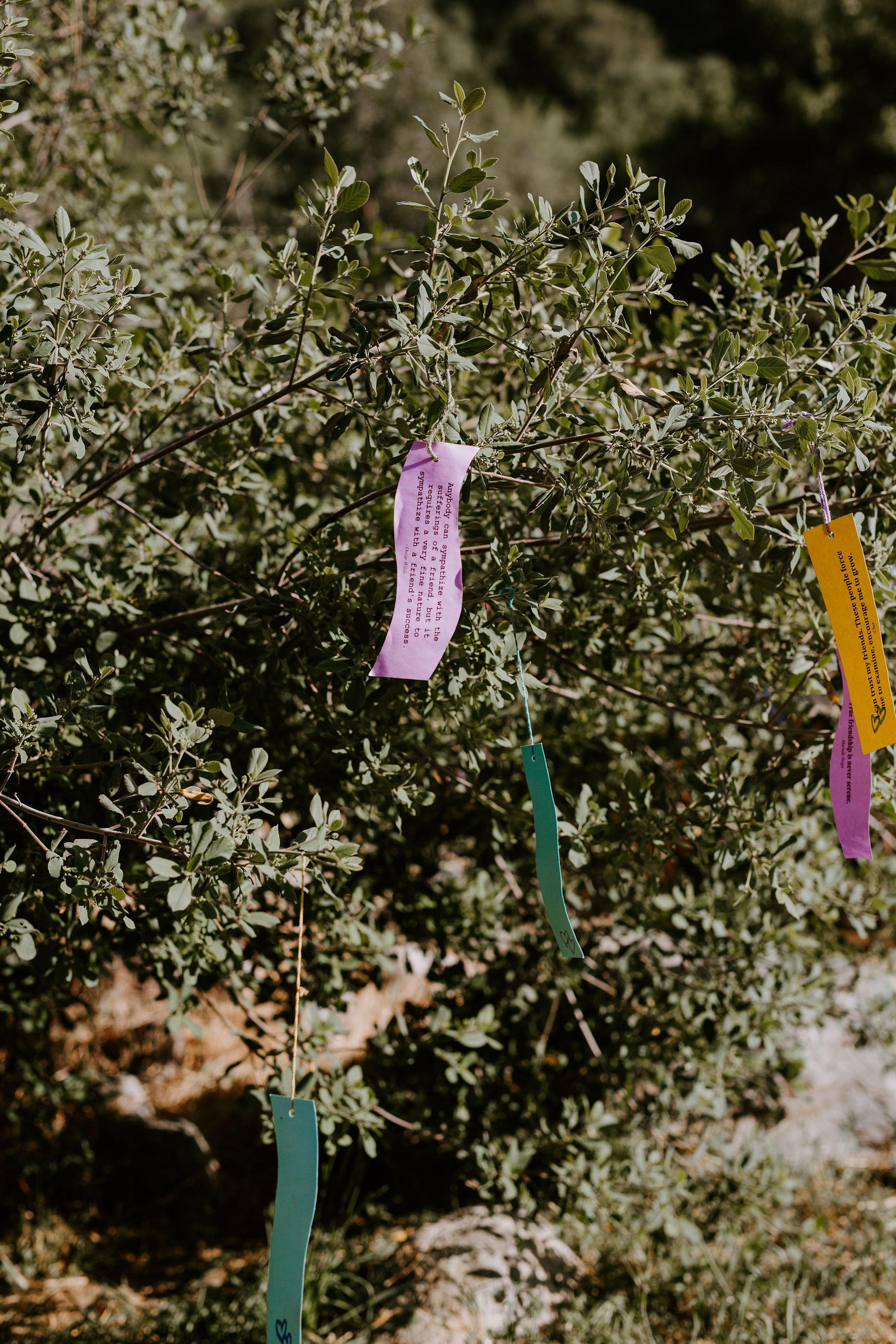 RedwoodRanch_Geoff&LyndsiPhotography_Mike&Amanda_Ceremony78.jpg