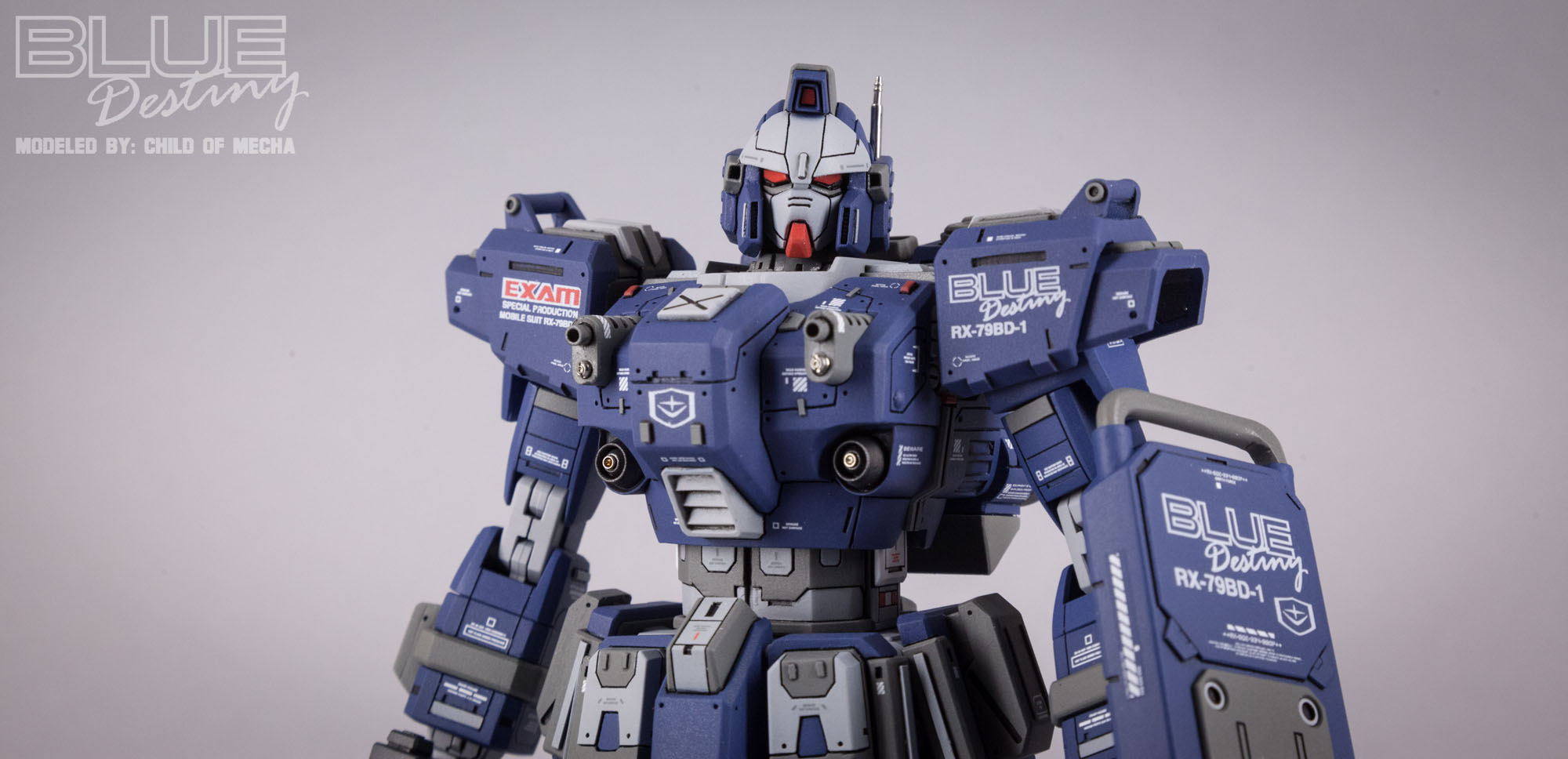 Blue Destiny Refurbished (3).jpg