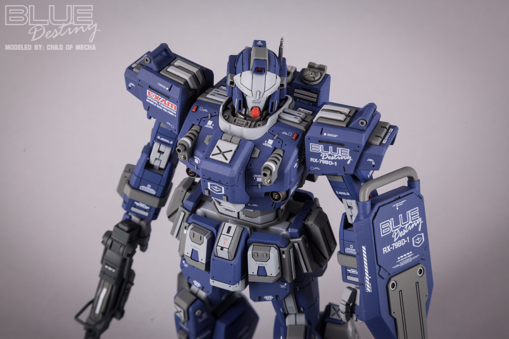 Blue Destiny Refurbished (9).jpg