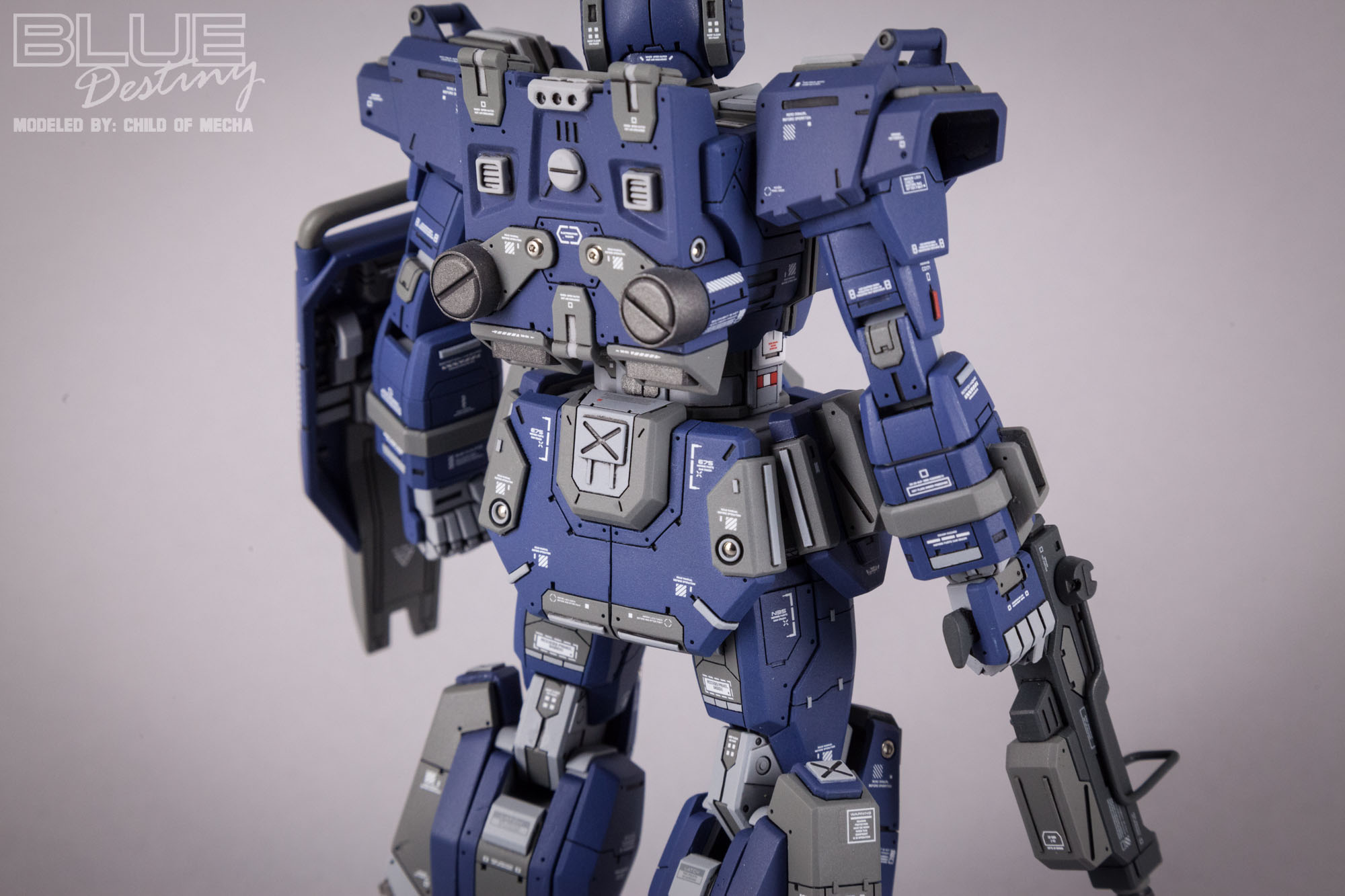 Blue Destiny Refurbished (13).jpg
